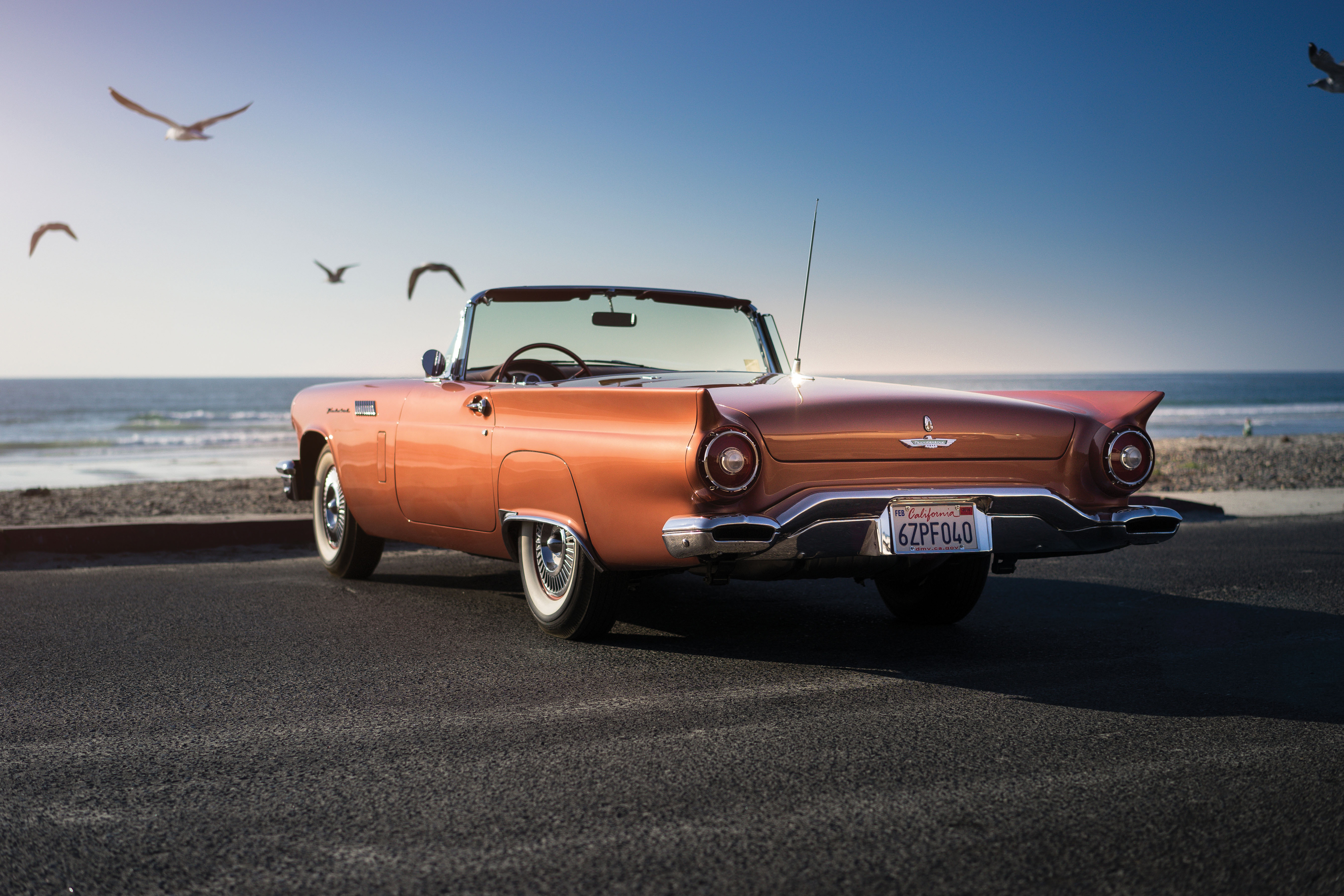 1957 Ford Thunderbird Wallpaper Hd Cars 4k Wallpapers Images Photos And Background Wallpapers Den