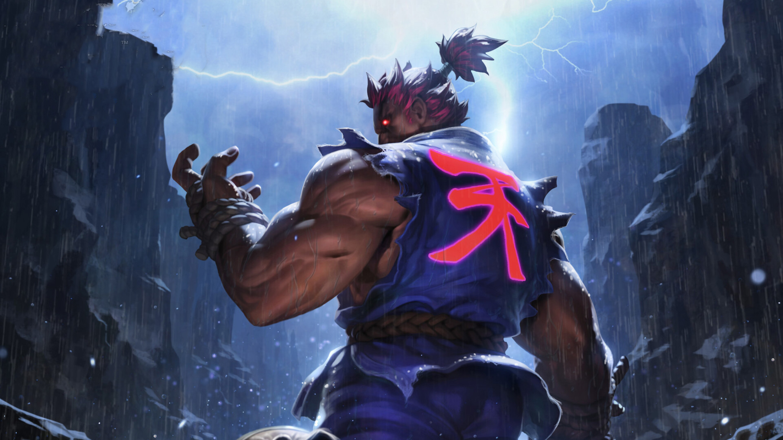 2560x1440 Akuma Street Fighter Game 1440p Resolution Wallpaper Hd