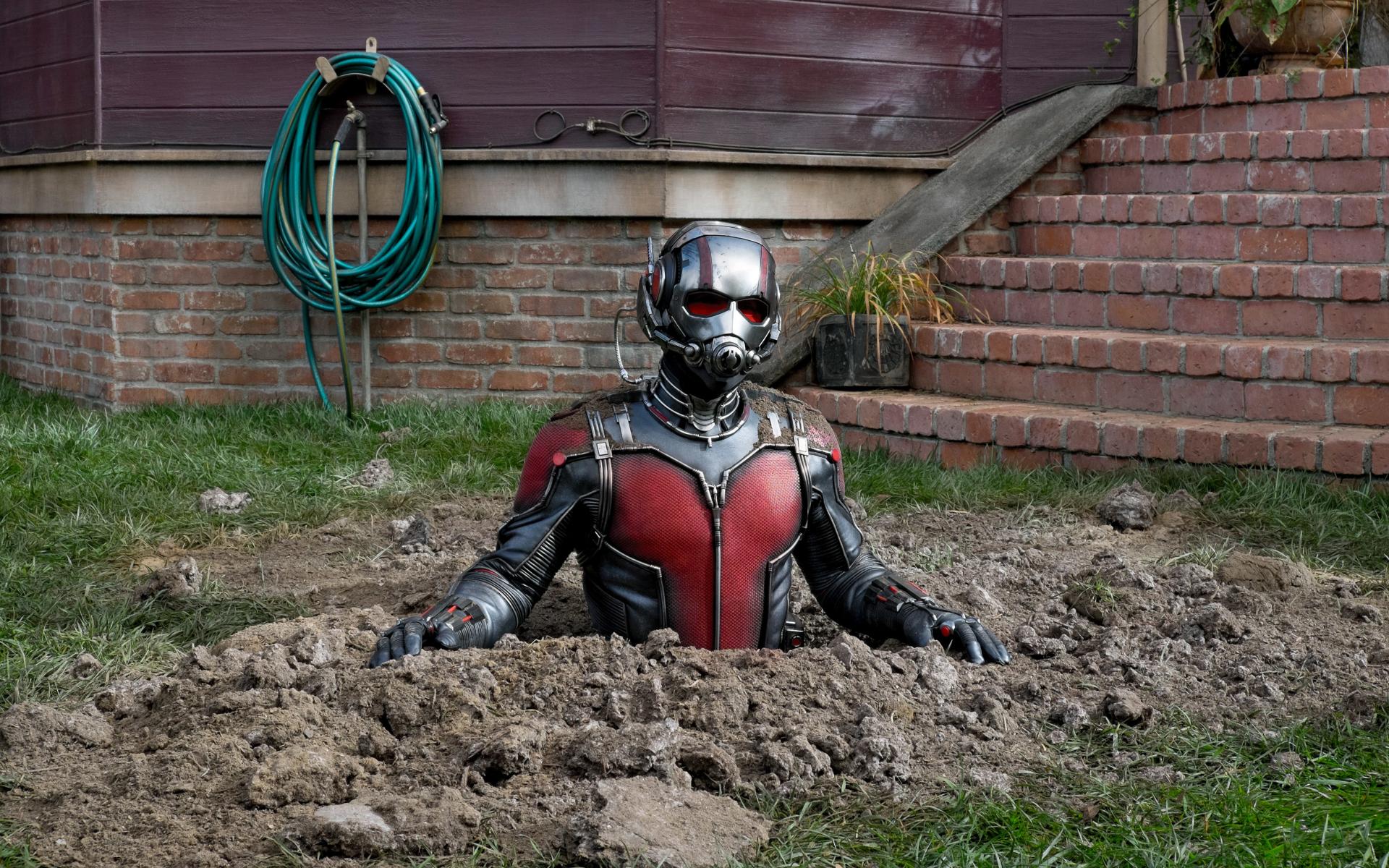 Ant Man Retina Movie Wallpaper: Ant Man 2018 Movie, HD 4K Wallpaper