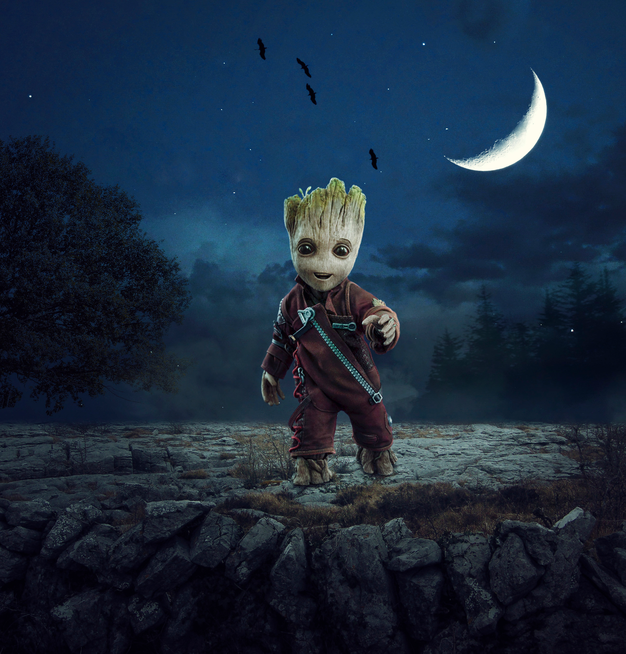 1080x2400 Baby Groot 1080x2400 Resolution Wallpaper Hd Artist 4k Wallpapers Images Photos And Background