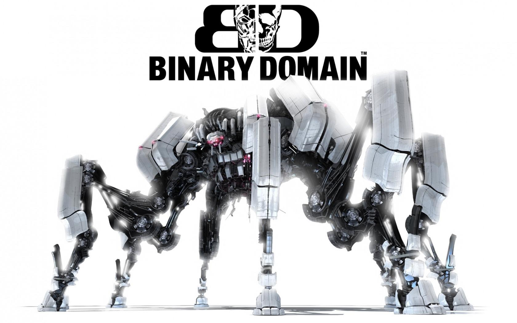 Binary domain no resolution options