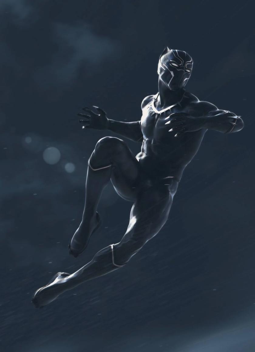 Black Panther Marvel Movie, Full HD Wallpaper