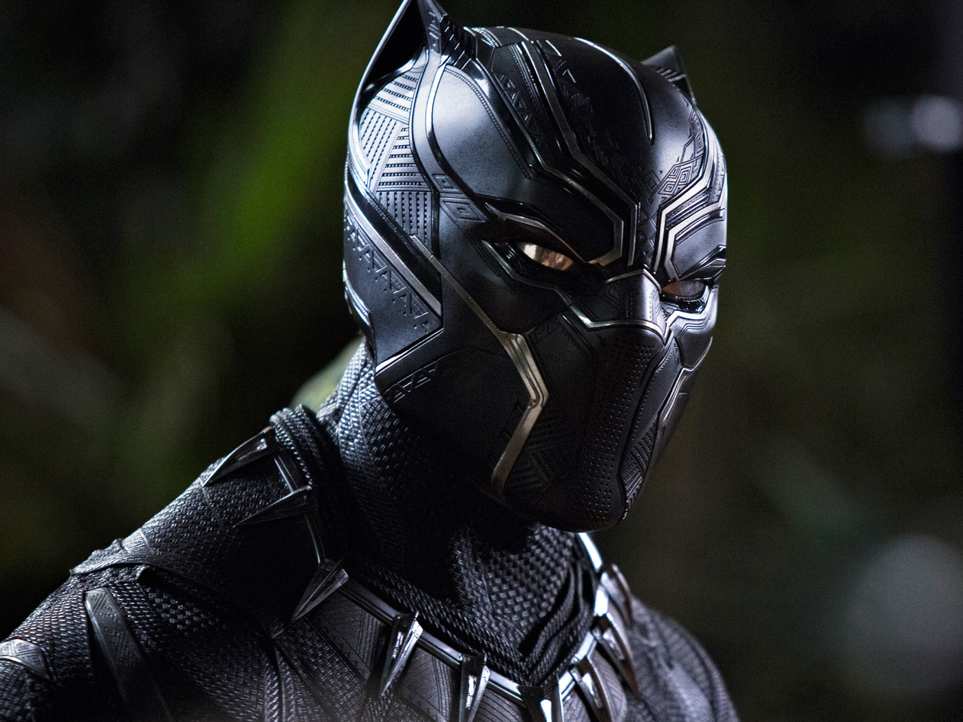 Black Panther Movie, Full HD 2K Wallpaper