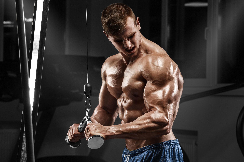 [69+] Muscle Man Wallpapers on WallpaperSafari