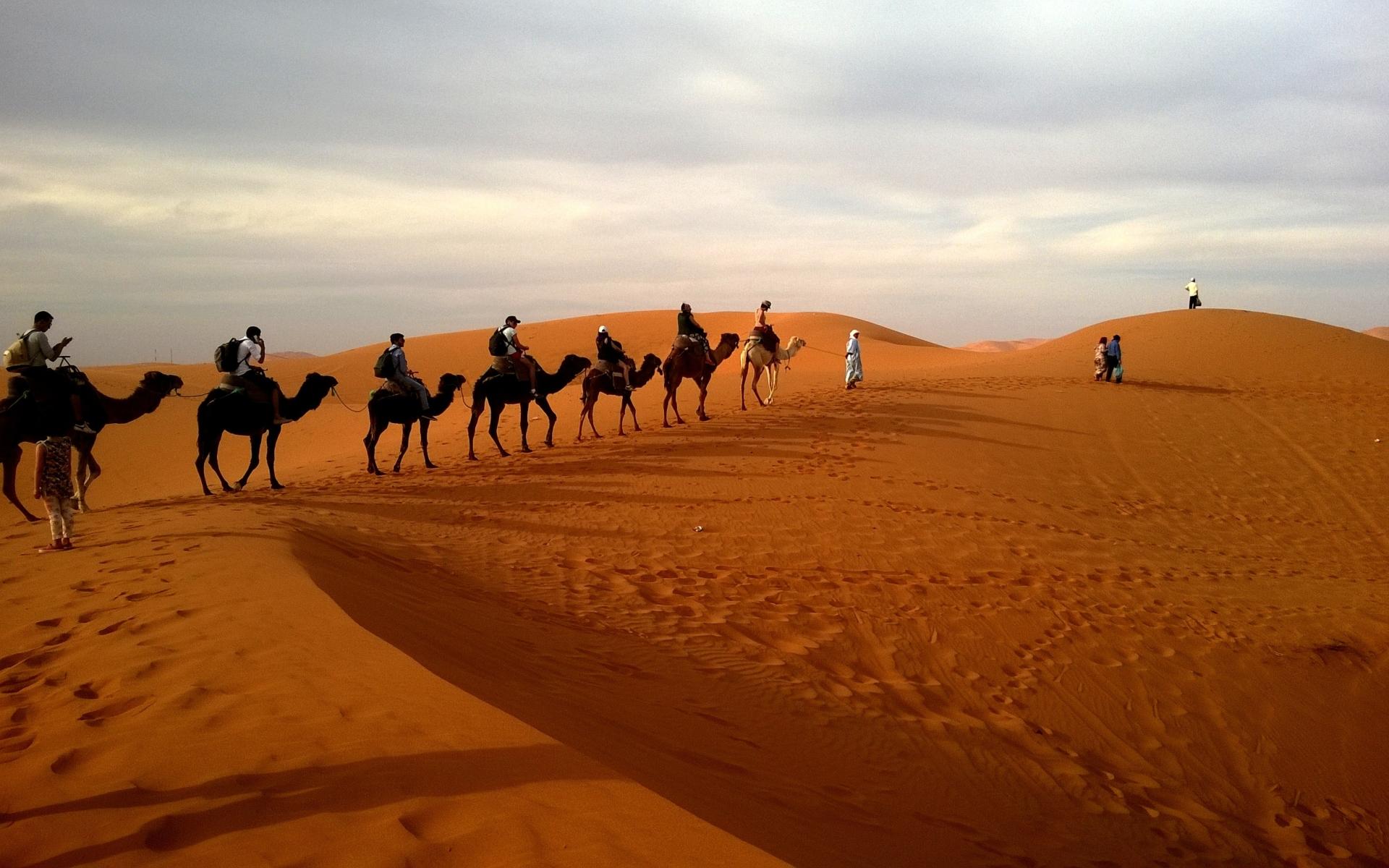 Пустыня дюны барханы караван верблюды загрузить
