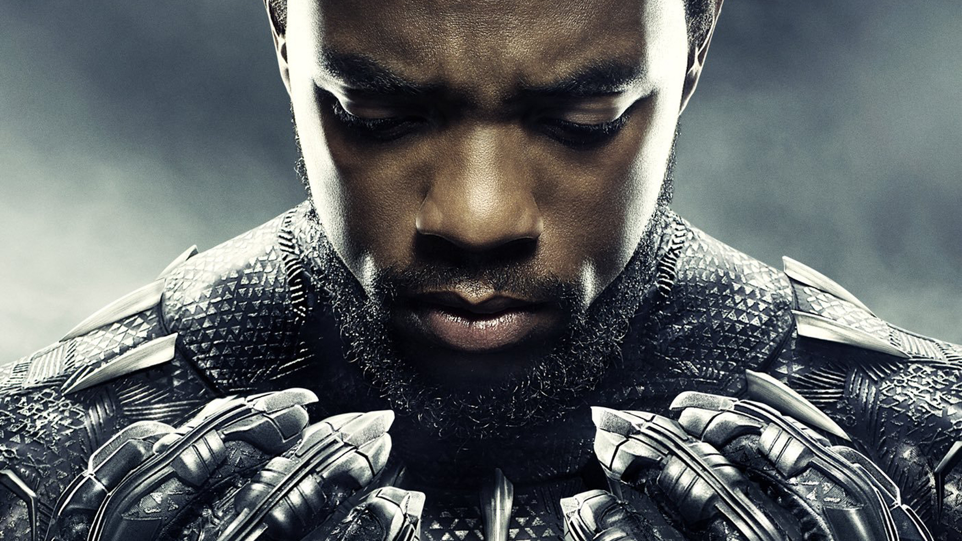 1920x1080 Chadwick Boseman In Black Panther 1080p Laptop