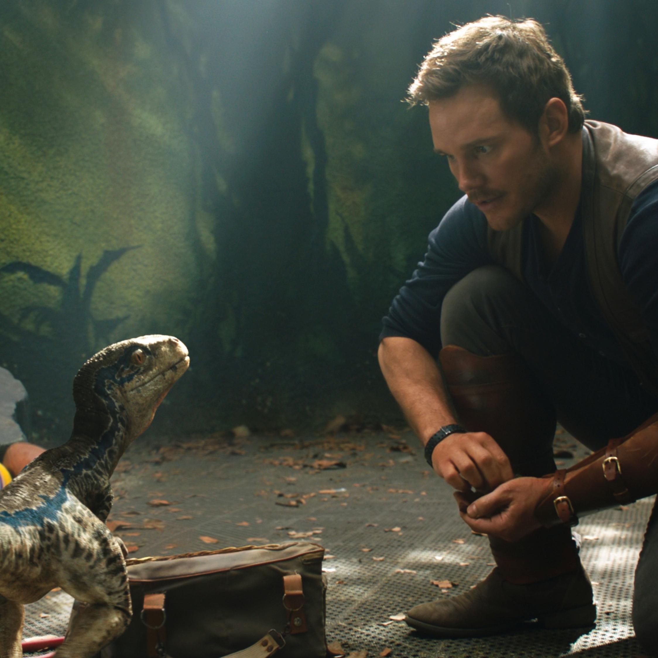 Download Chris Pratt And Little Raptor Jurassic World 2248x2248