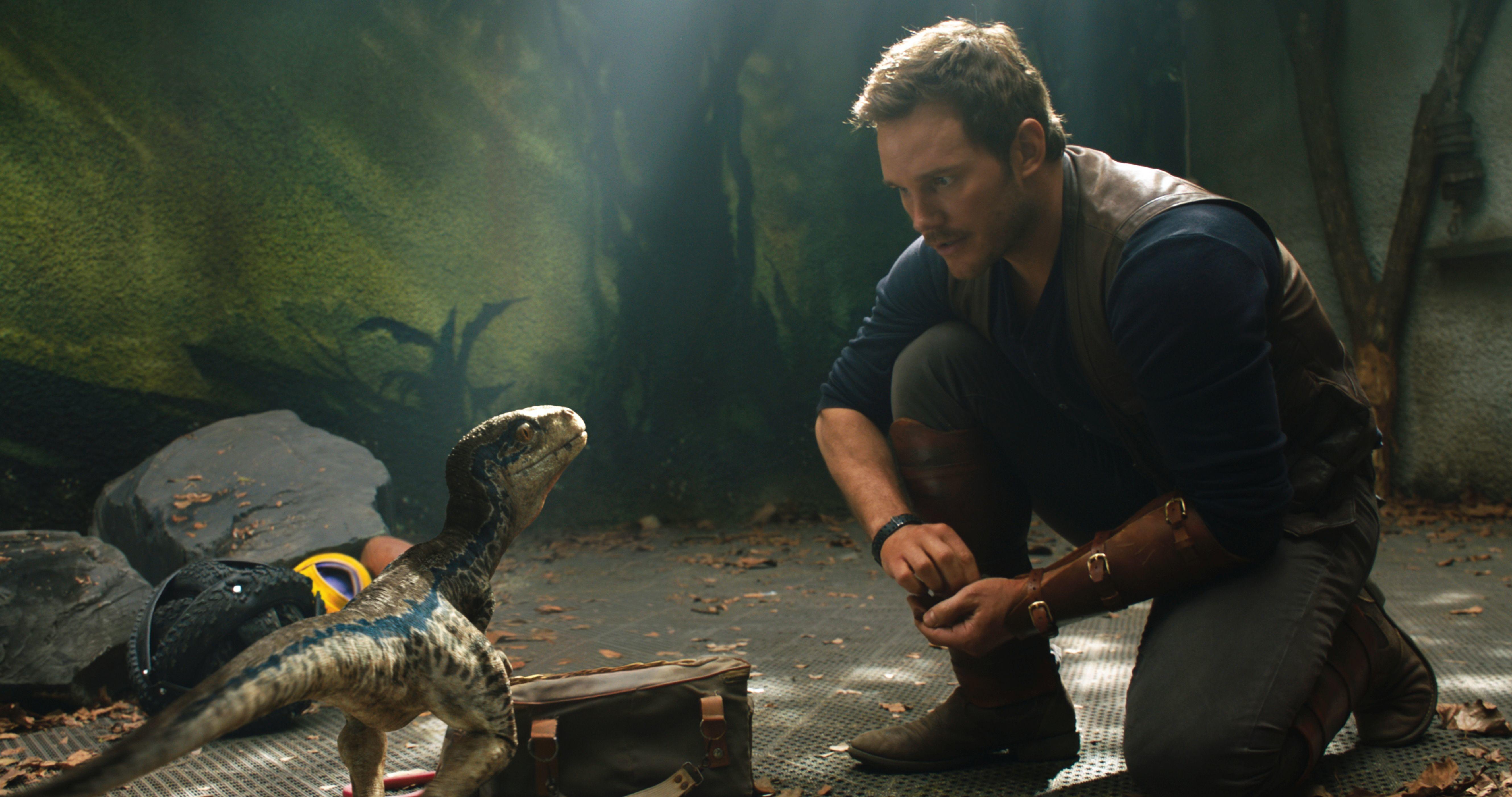 Chris Pratt And Little Raptor Jurassic World Wallpaper Hd