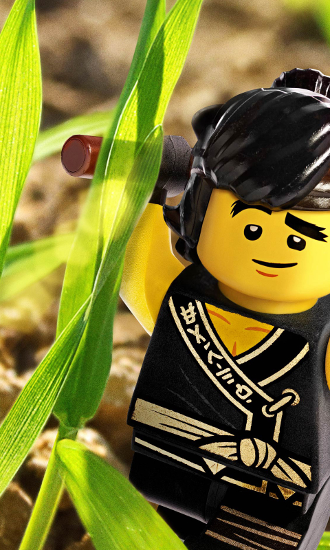 Download Cole From Kai - The Lego Ninjago Movie 1152x864 Resolution ...