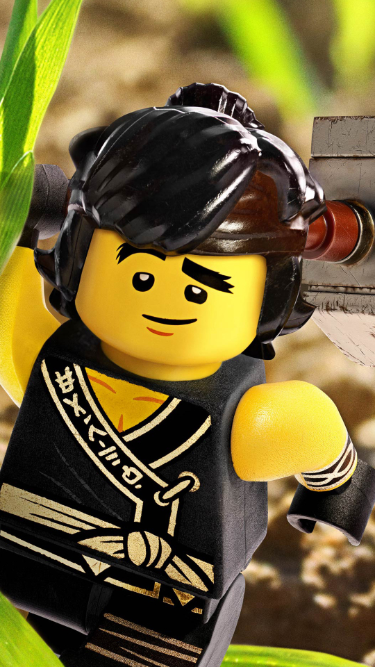 Download Cole From Kai - The Lego Ninjago Movie 1280x1024 Resolution ...