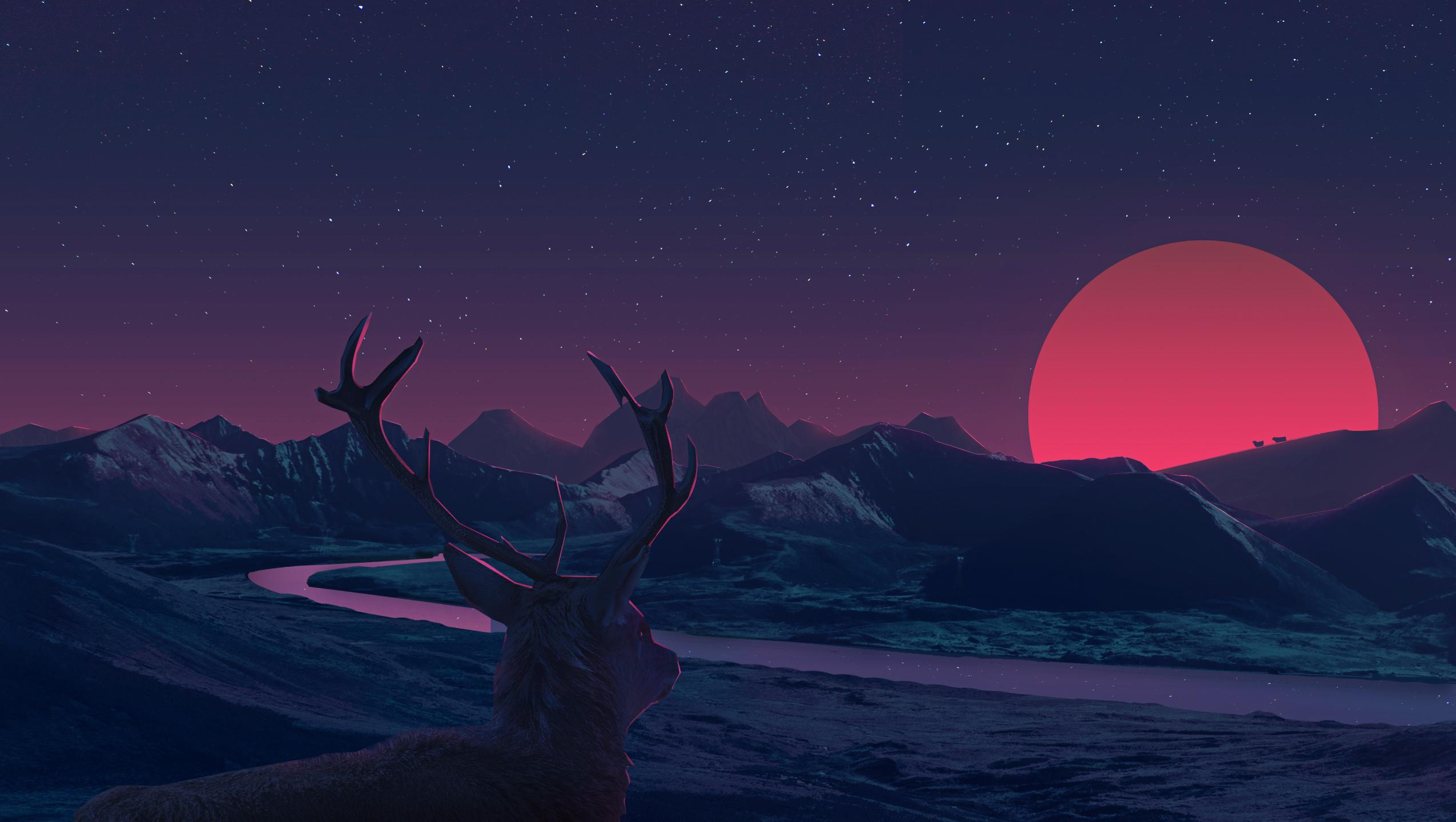 deer staring at sunset anime full hd 2k wallpaper