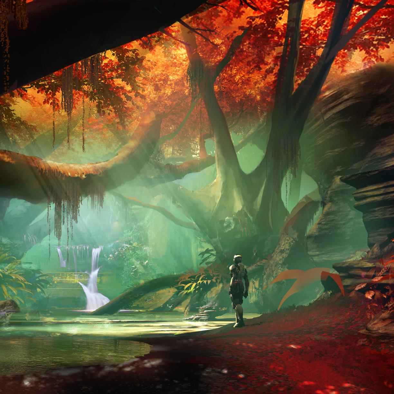 Destiny Desktop Wallpaper: Destiny 2 Forest, HD 8K Wallpaper