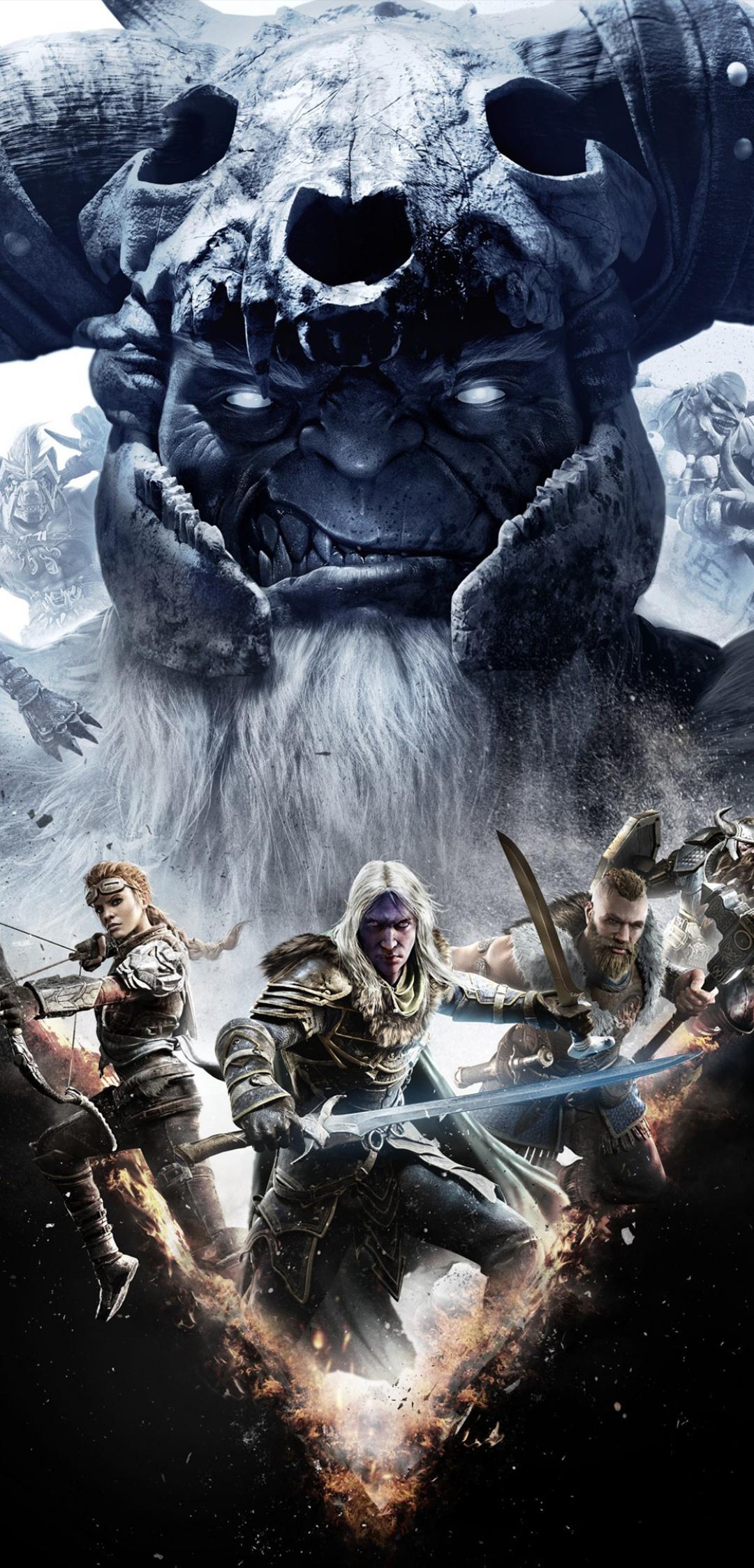 1080x2246 Dungeons And Dragons Dark Alliance 1080x2246 Resolution