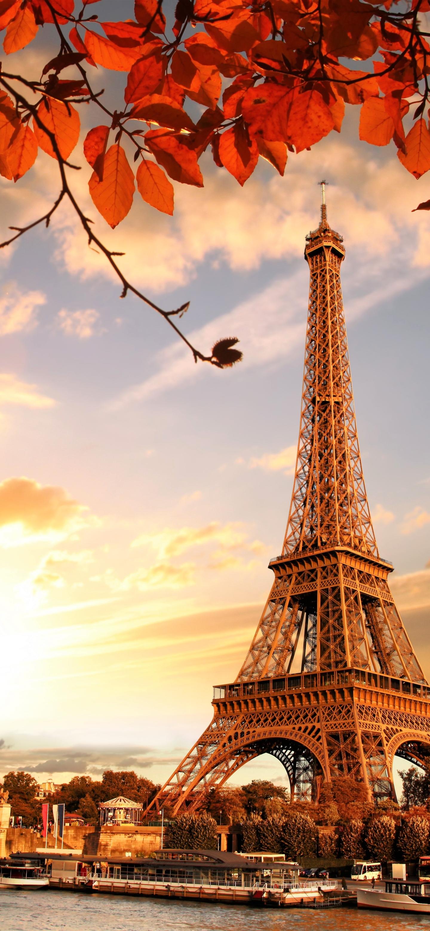 1440x3120 Eiffel Tower In Autumn France Paris Fall 1440x3120
