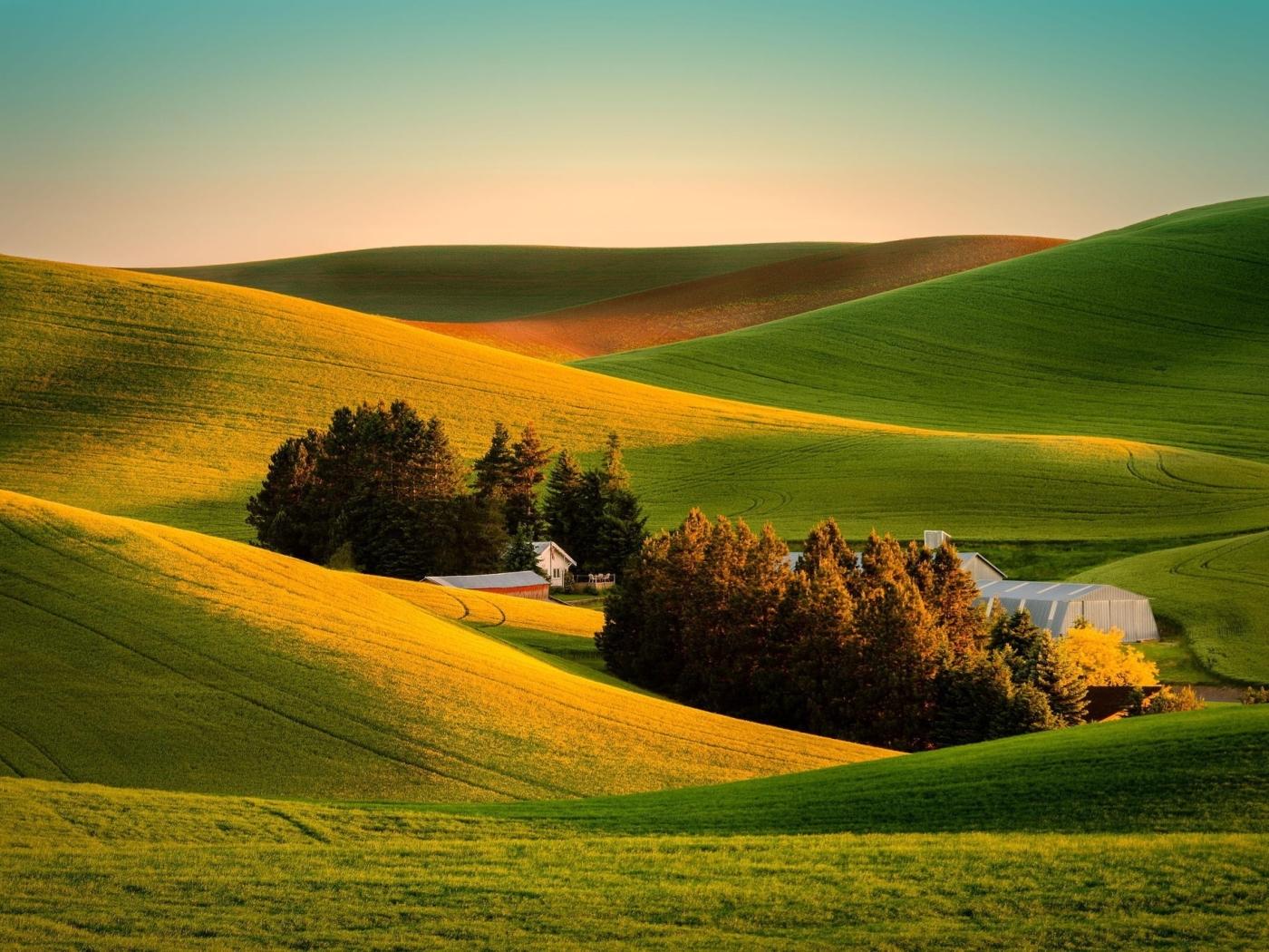 Поля, вид с холма  № 2907827 бесплатно