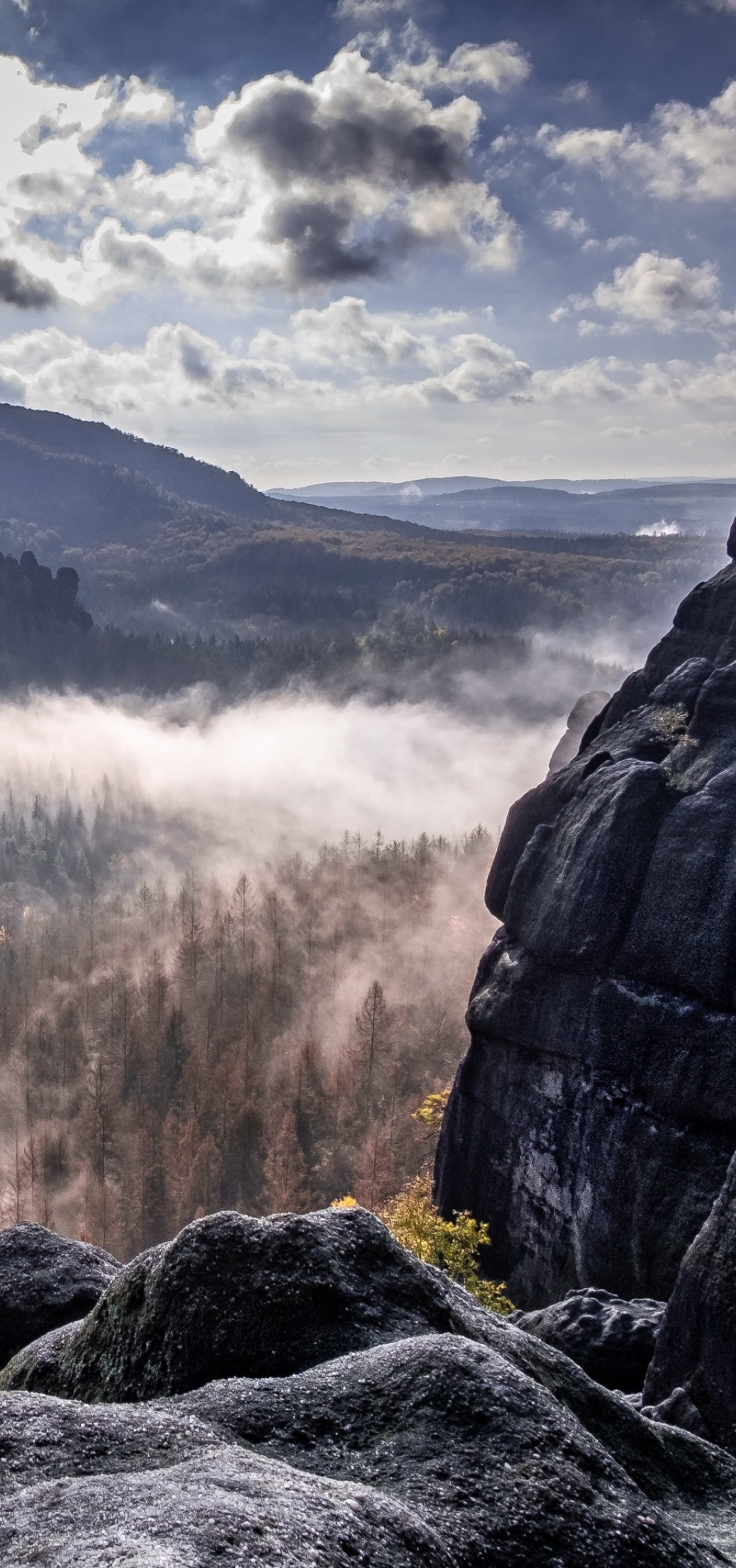 1080x2300 Fog Forest Mountain Photography 1080x2300 ...