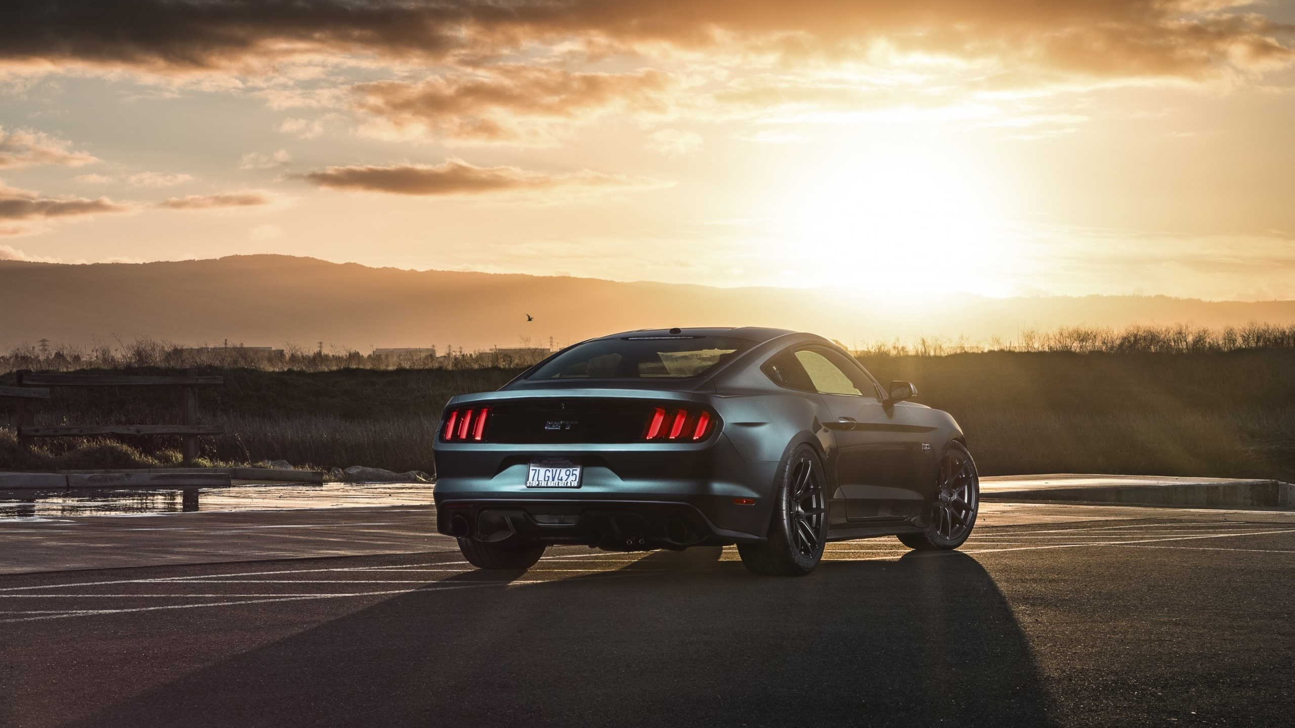 2560x1440 Ford Mustang 2015 Gt 1440p Resolution Wallpaper Hd Cars 4k Wallpapers Images Photos And Background Wallpapers Den