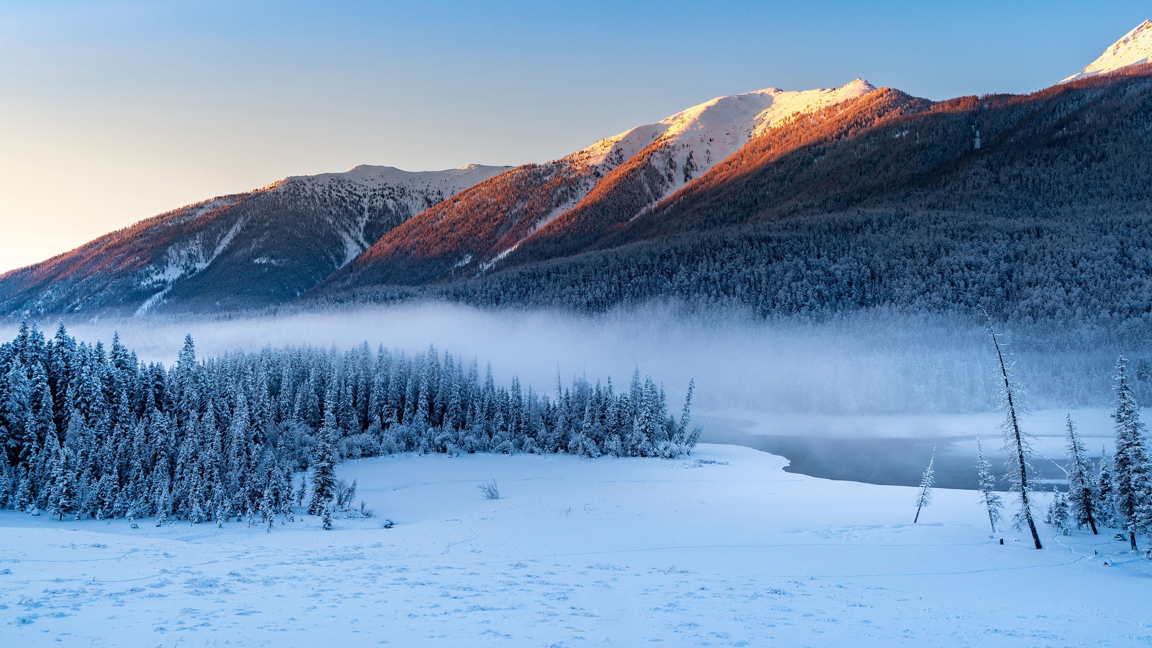 Forest Snowy Winter Mountains Wallpaper, HD Nature 4K ...