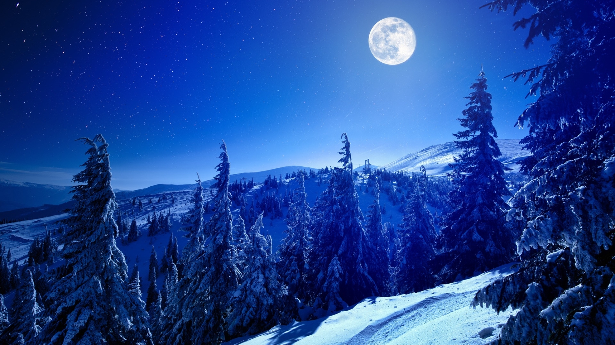 2048x1152 Full Moon Over Winter Forest 2048x1152 Resolution