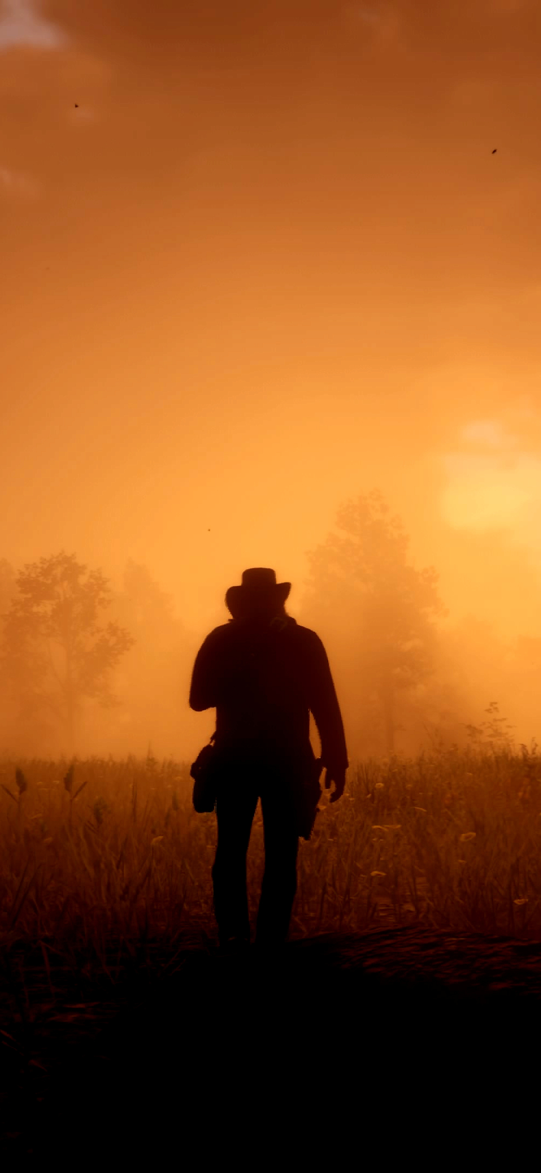 24+ Red Dead Redemption 2 Wallpaper Images