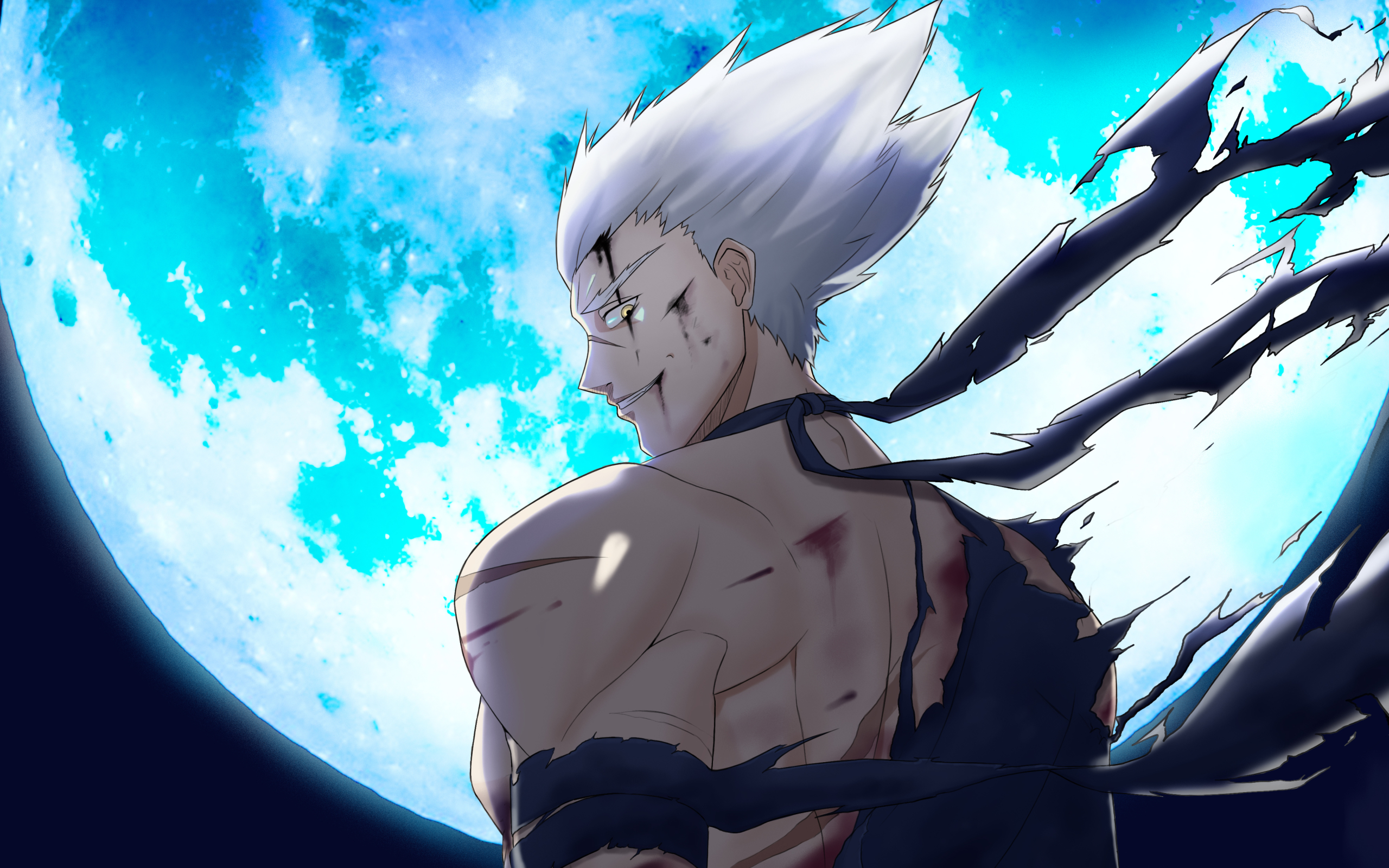 2560x1600 Garou One Punch Man 2560x1600 Resolution Wallpaper Hd