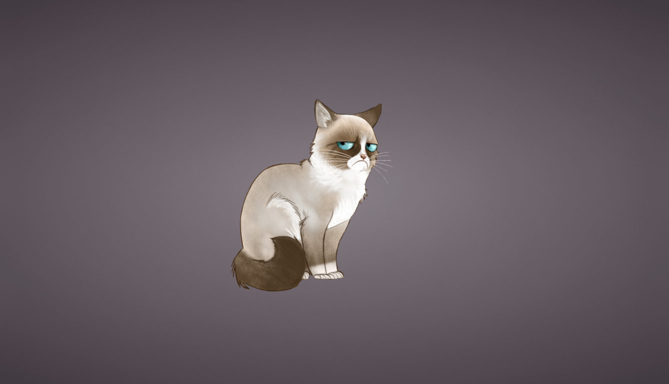 1336x768 Grumpy Cat Meme Cat Hd Laptop Wallpaper Hd Vector 4k Wallpapers Images Photos And Background