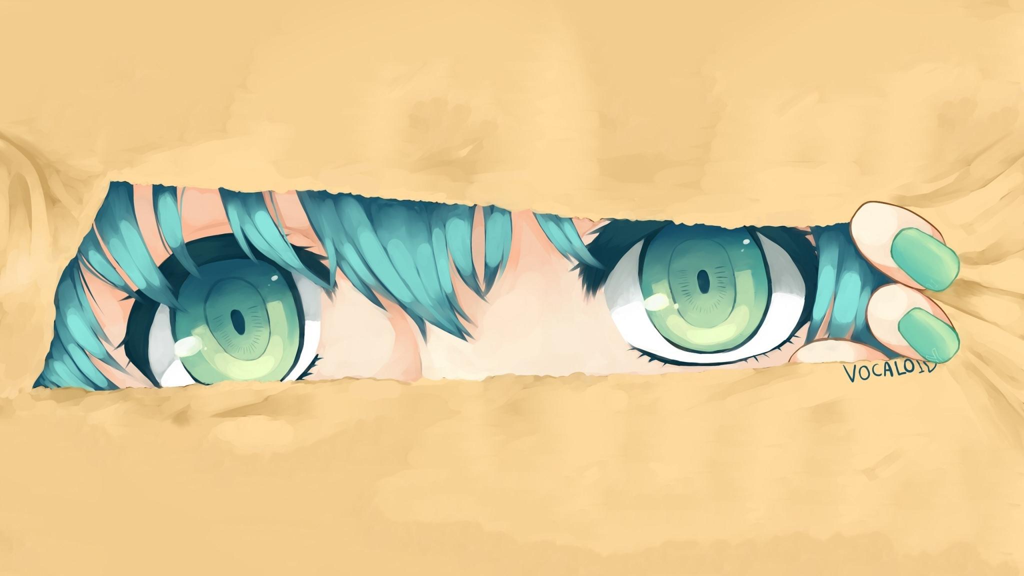 Hatsune Miku, Vocaloid, Girl, Full HD 2K Wallpaper