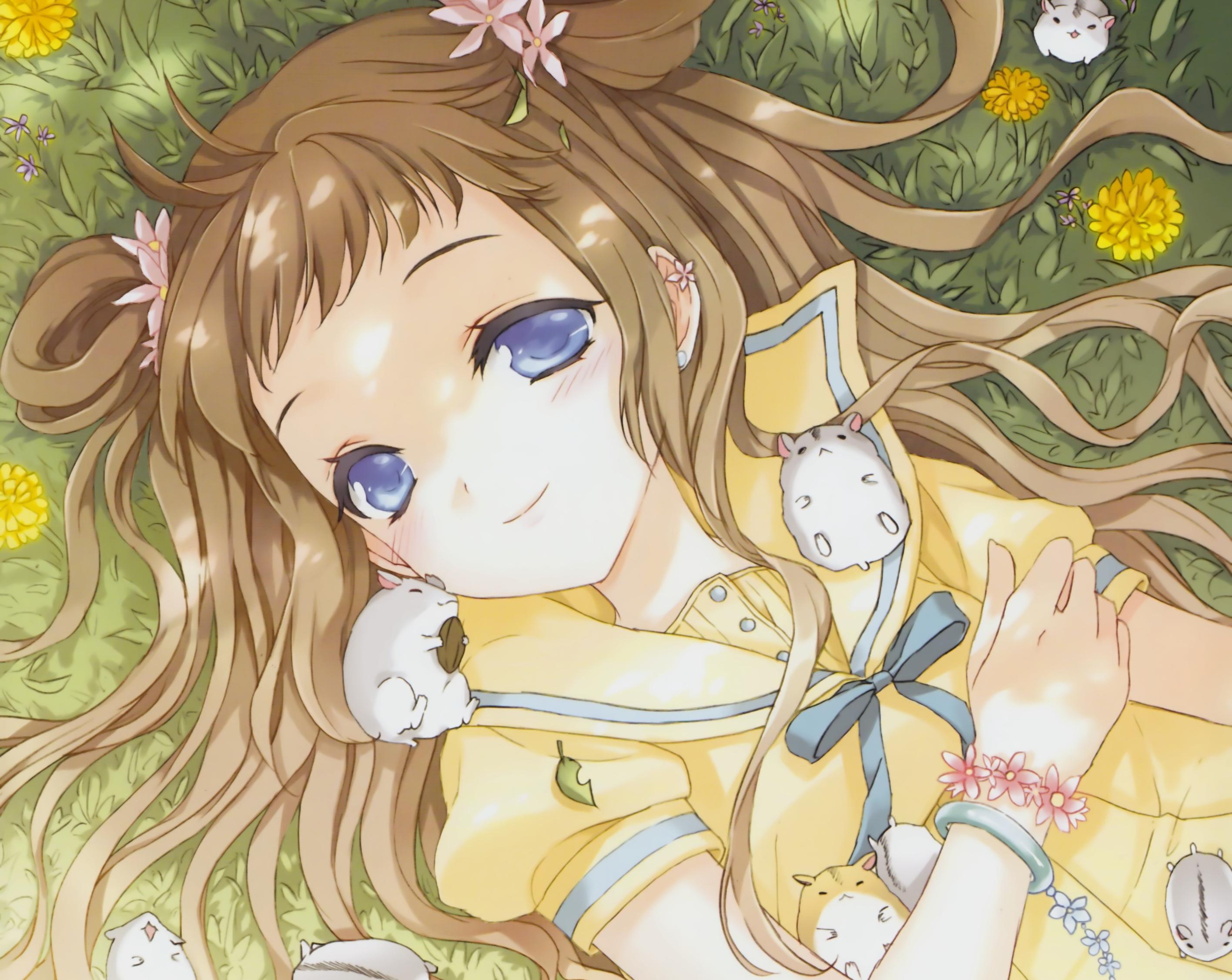 Himouto Umaru Chan Girl Wallpaper Hd Anime 4k Wallpapers