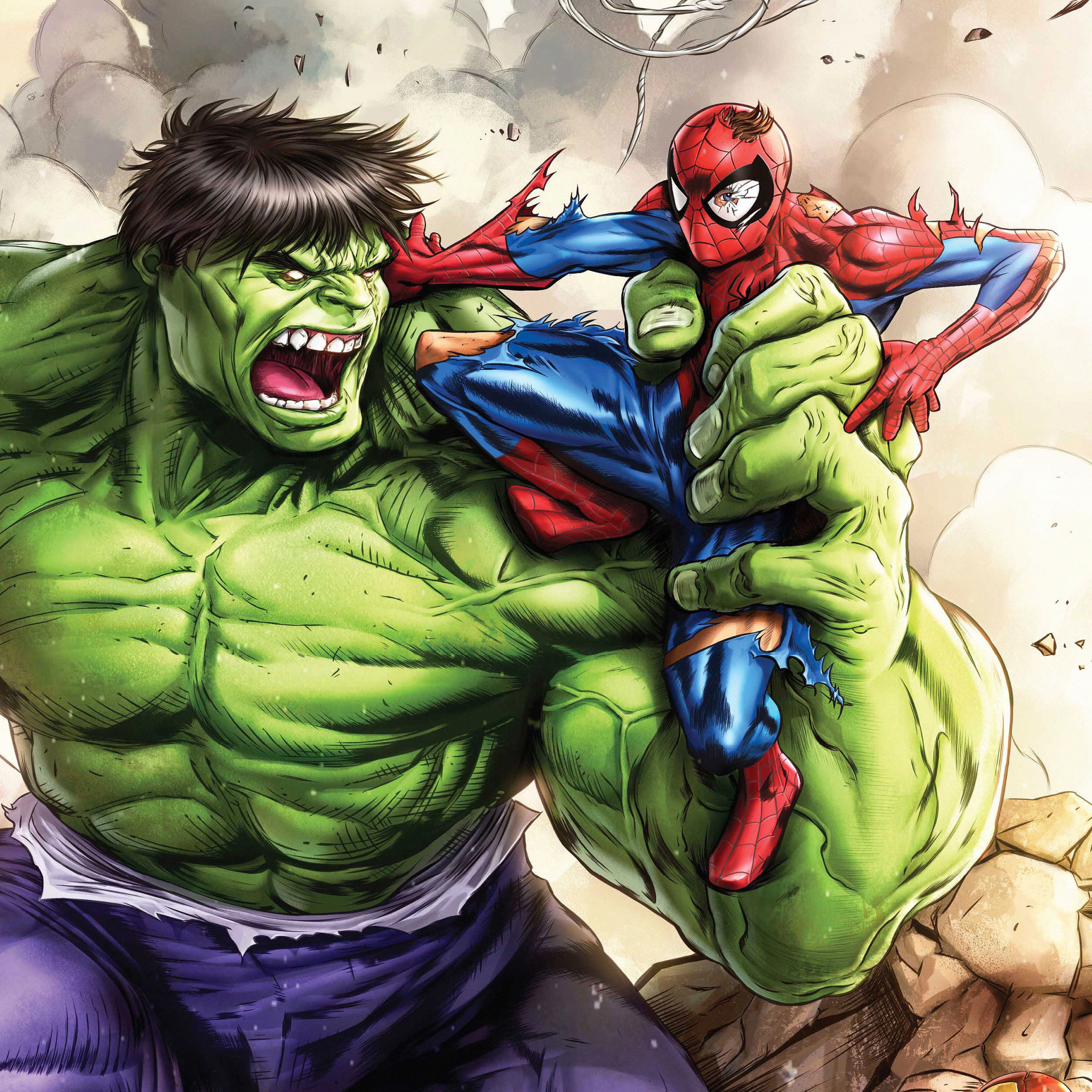 2048x2048 Hulk Vs Spiderman Art Ipad Air Wallpaper, HD ...