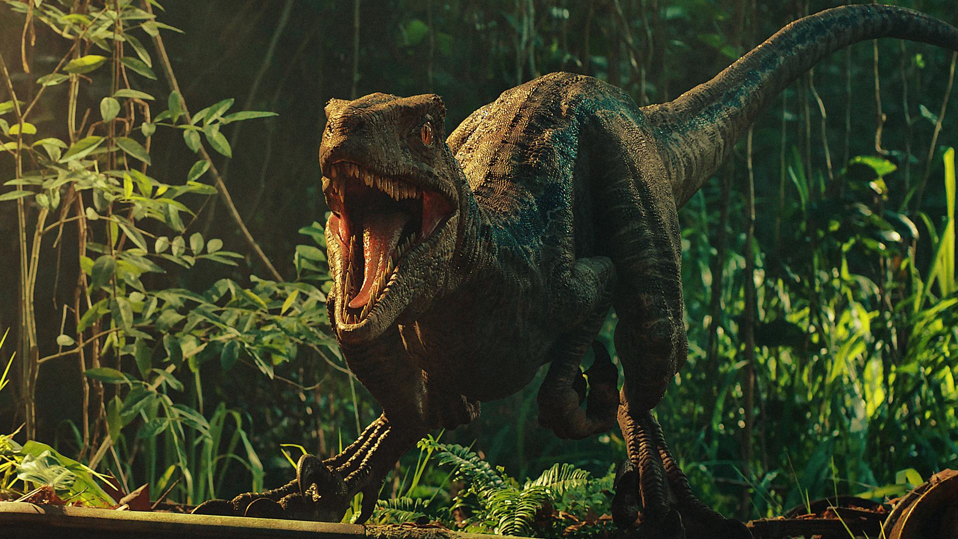 1920x1080 Jurassic World Fallen Kingdom Dinosaurs 1080P ...