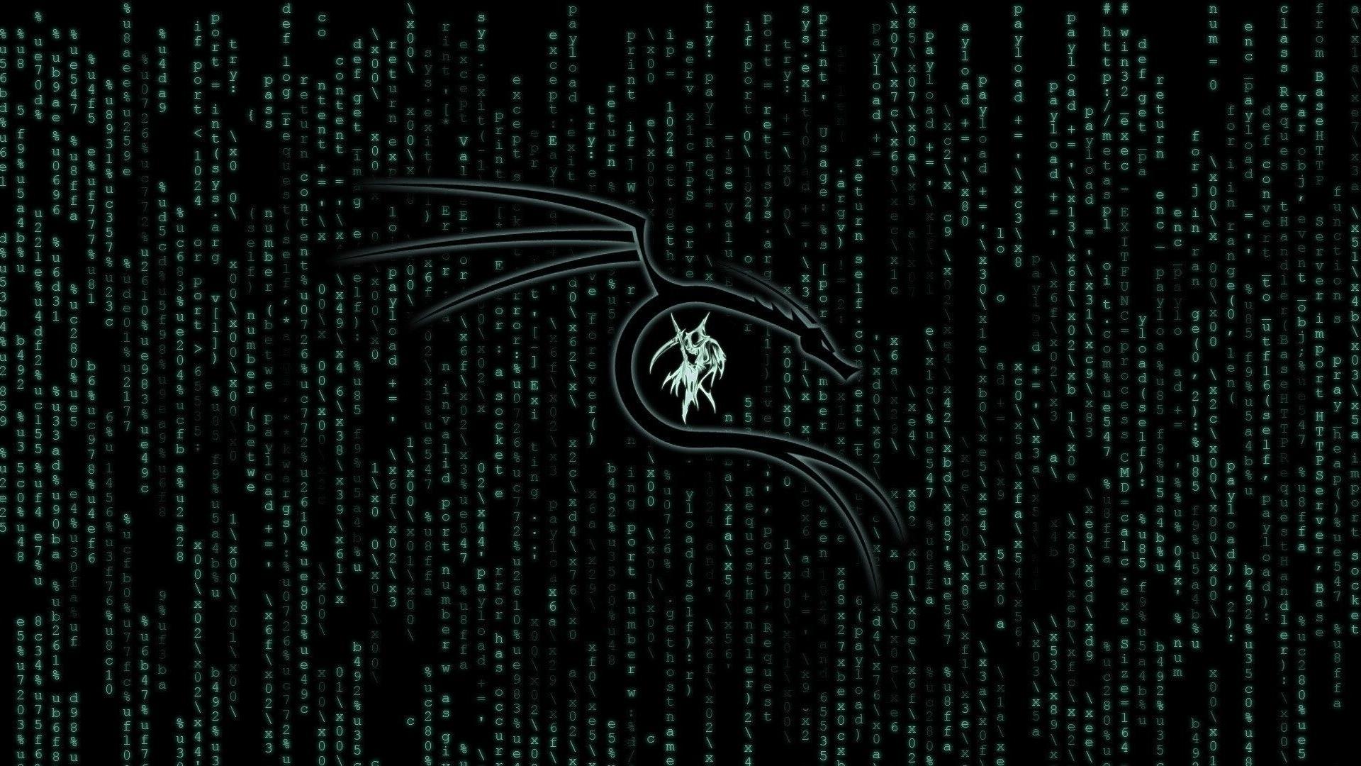 1920x1080 Kali Linux Matrix 1080p Laptop Full Hd Wallpaper Hd Hi Tech 4k Wallpapers Images Photos And Background