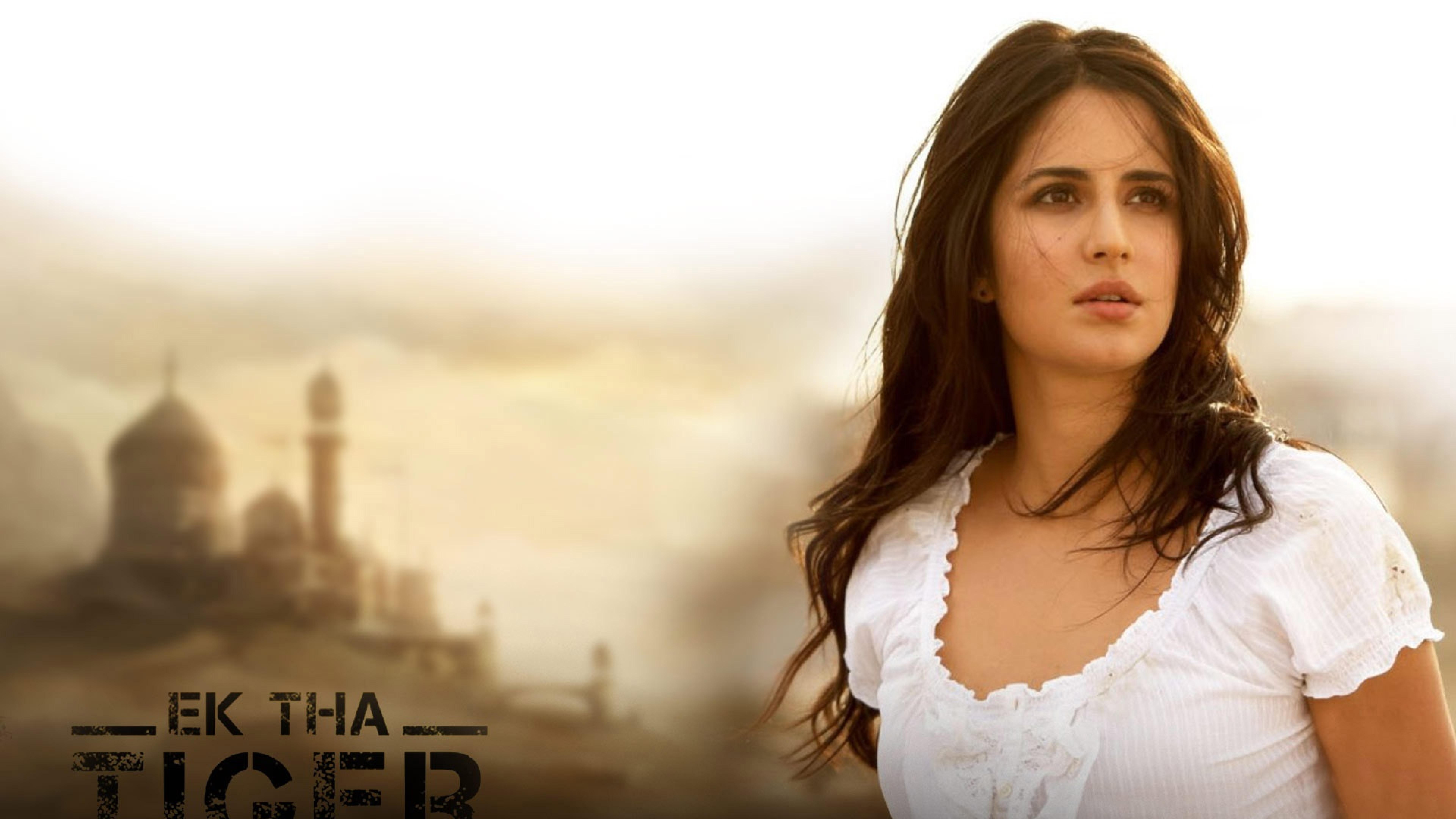 Katrina Kaif In Ek Tha Tiger, Full Hd Wallpaper-7420