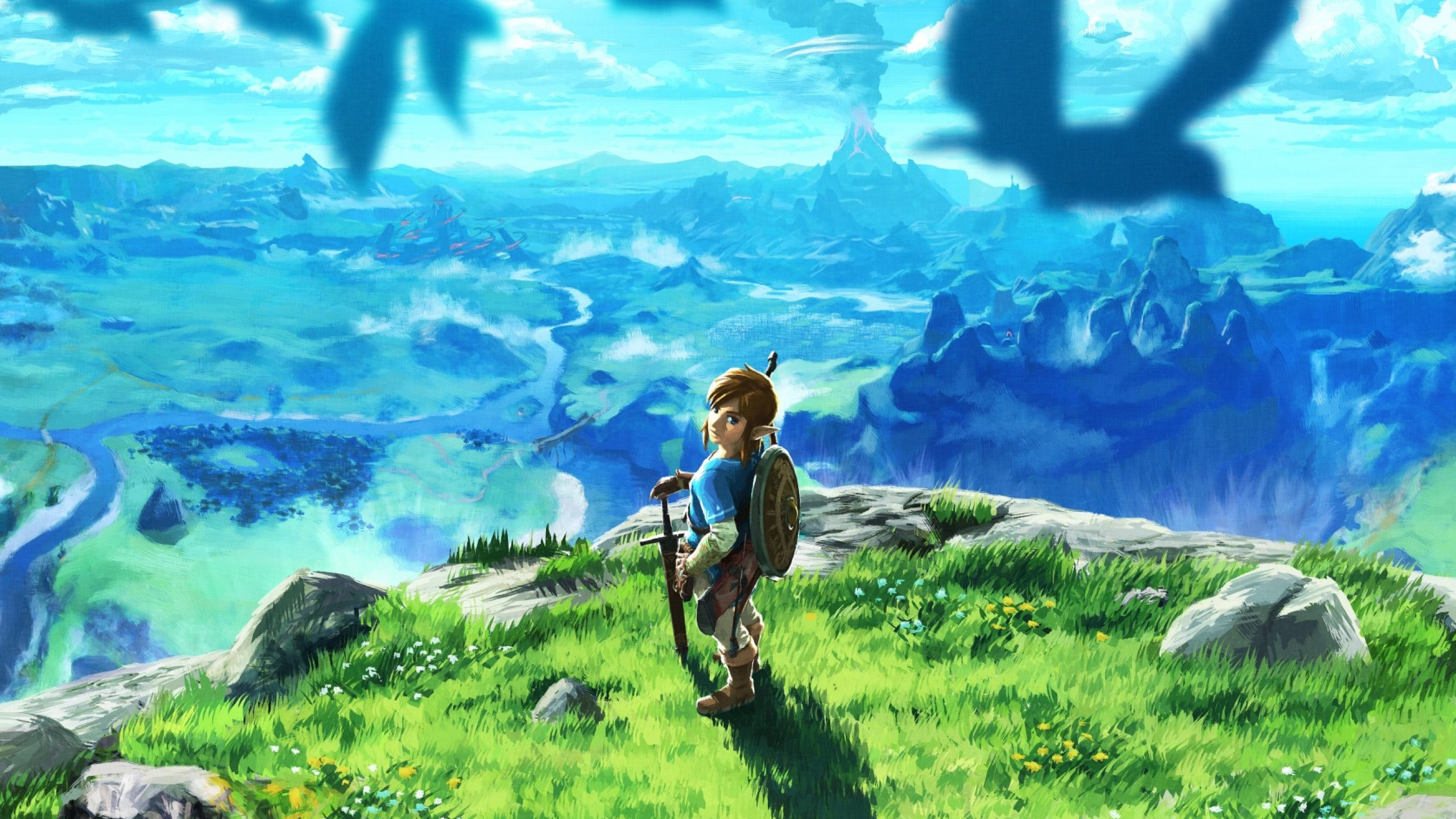 2560x1440 Legend Of Zelda Breath Of The Wild Art 1440p