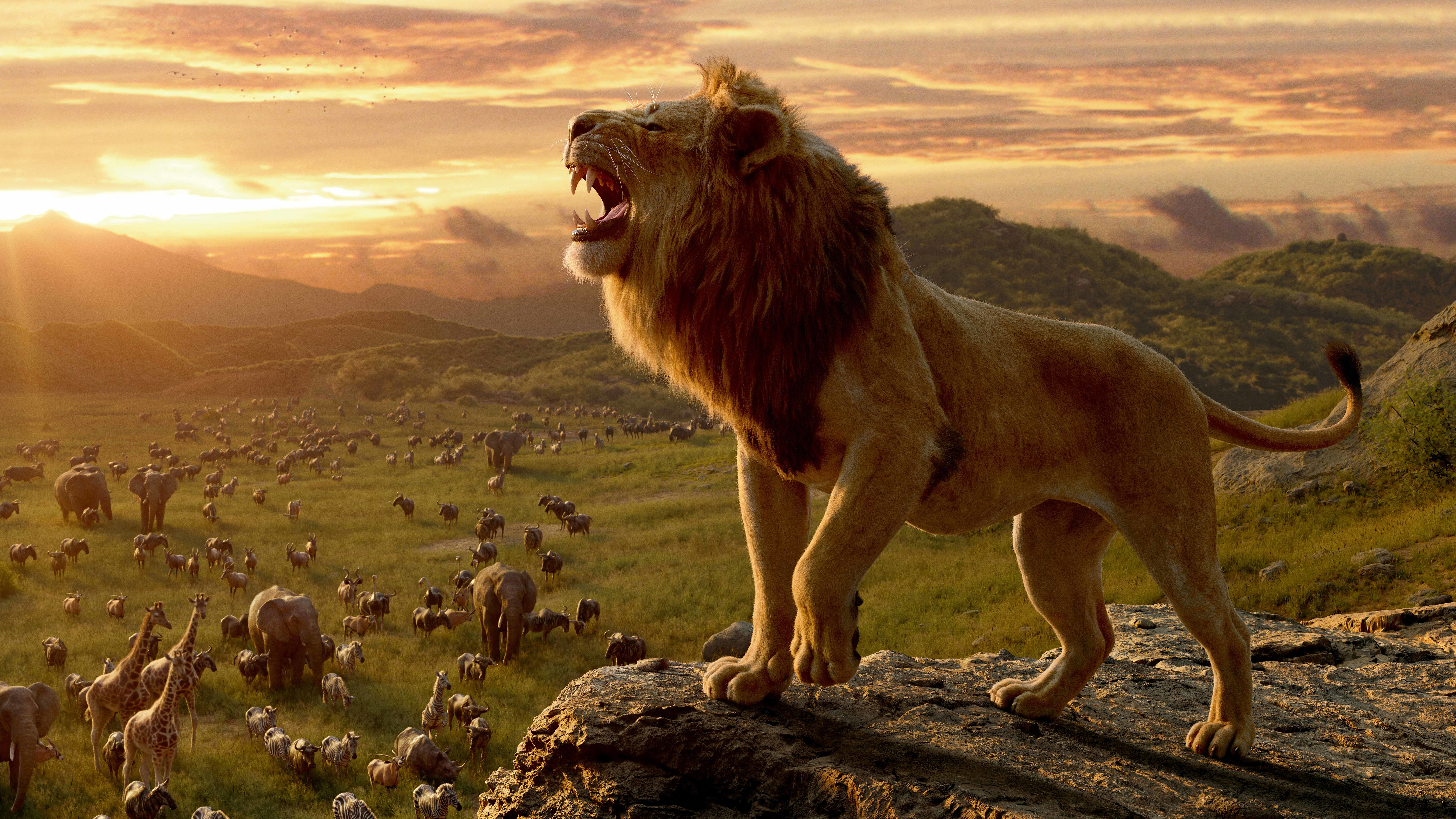 1080x2340 Lion From The Lion King 1080x2340 Resolution Wallpaper