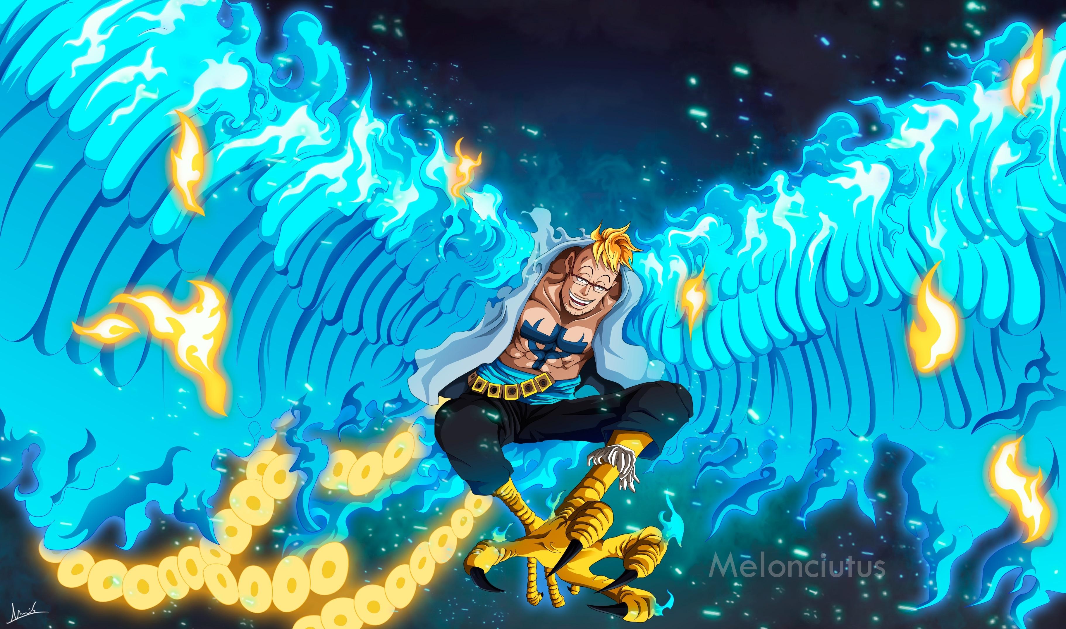 Marco One Piece Art Wallpaper, HD Anime 4K Wallpapers ...