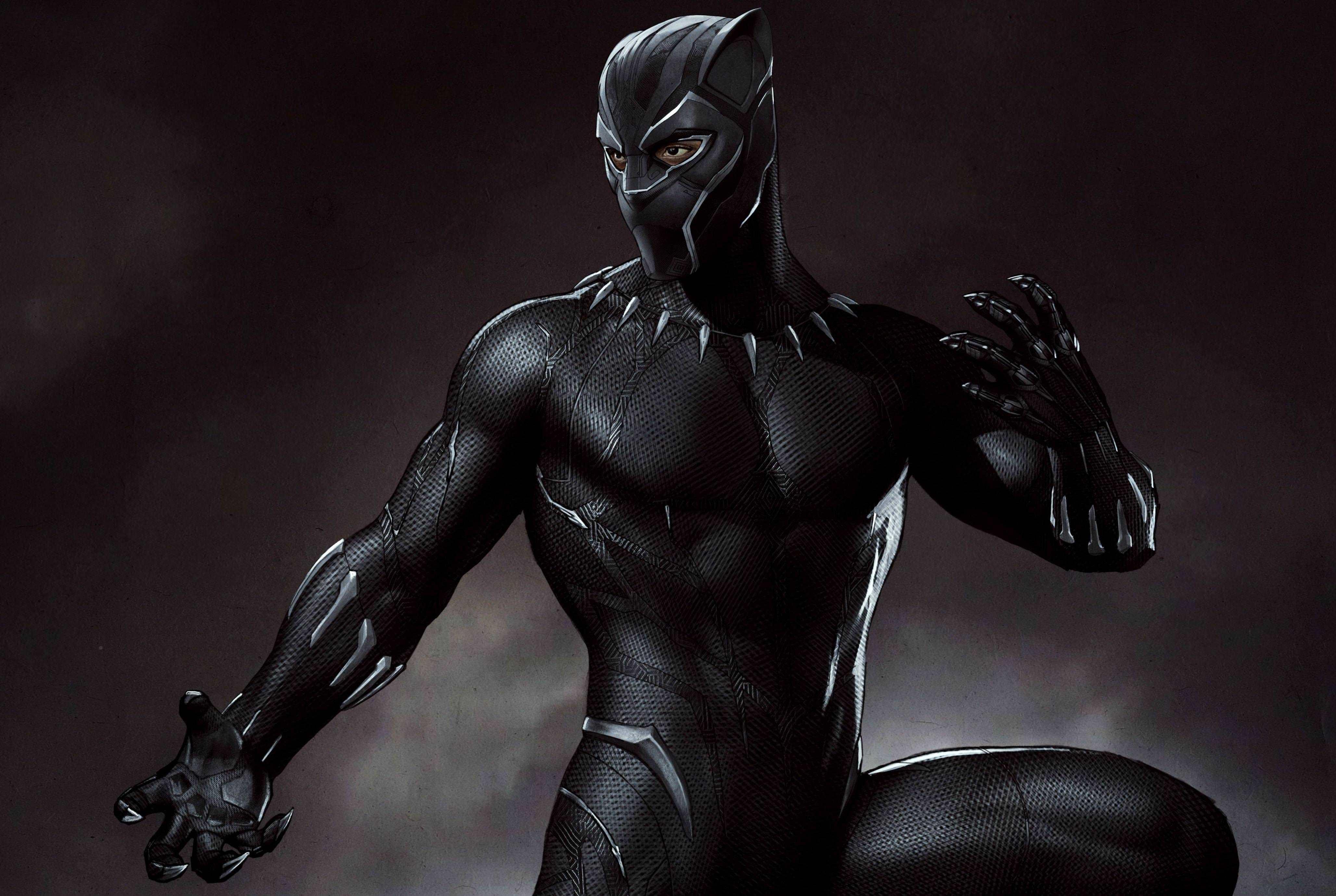 Marvel Black Panther Artwork, HD 4K Wallpaper