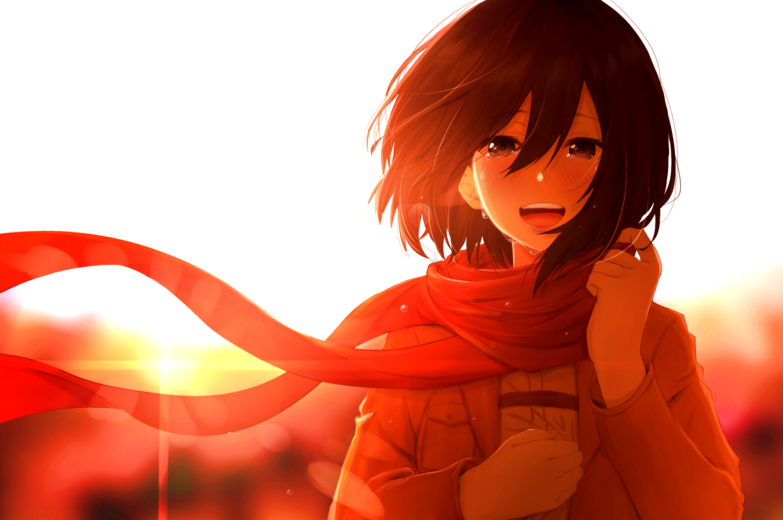 2560x1700 Mikasa Ackerman Anime Chromebook Pixel Wallpaper Hd Anime 4k Wallpapers Images Photos And Background
