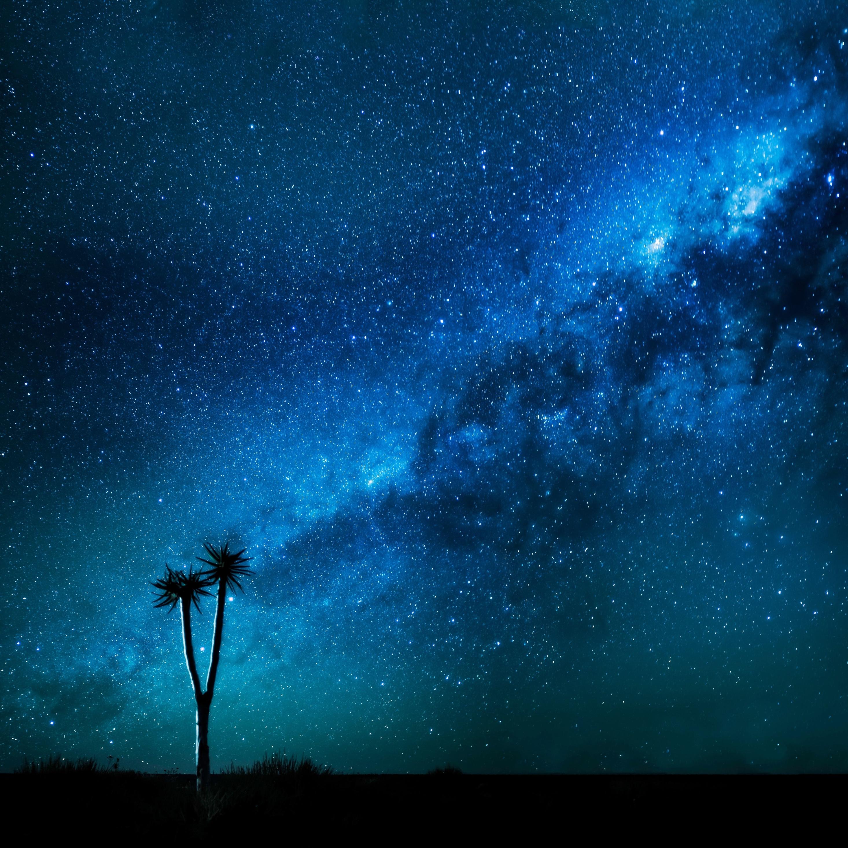 Milky Way Wallpaper: Milkyway, HD 8K Wallpaper