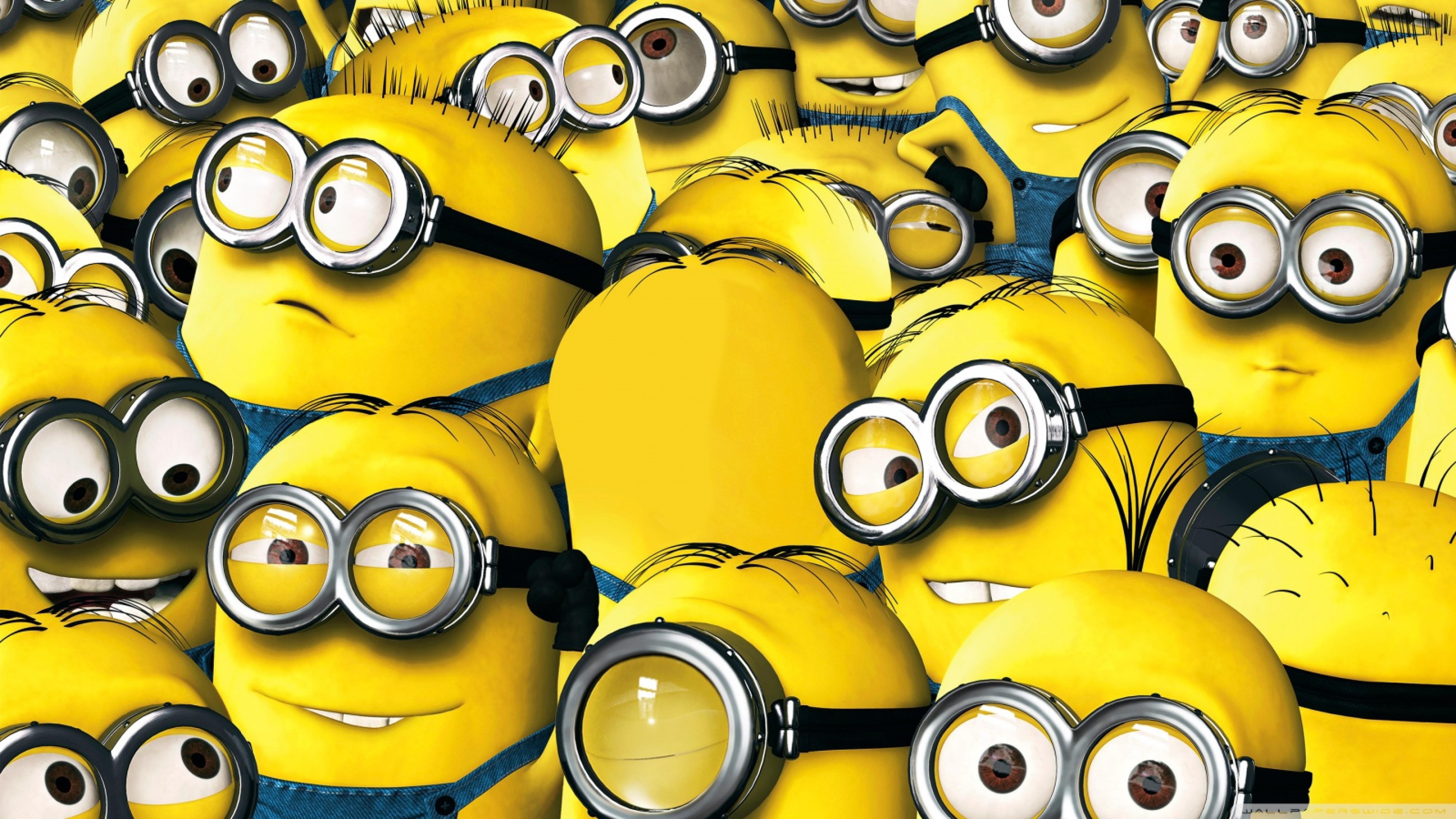 Minions 2015 Latest Photoshoot, Full HD Wallpaper
