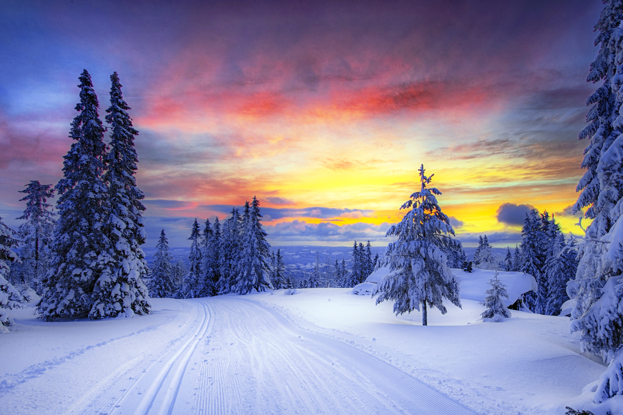 Norway Winter Forest Wallpaper Hd Nature 4k Wallpapers Images Photos And Background