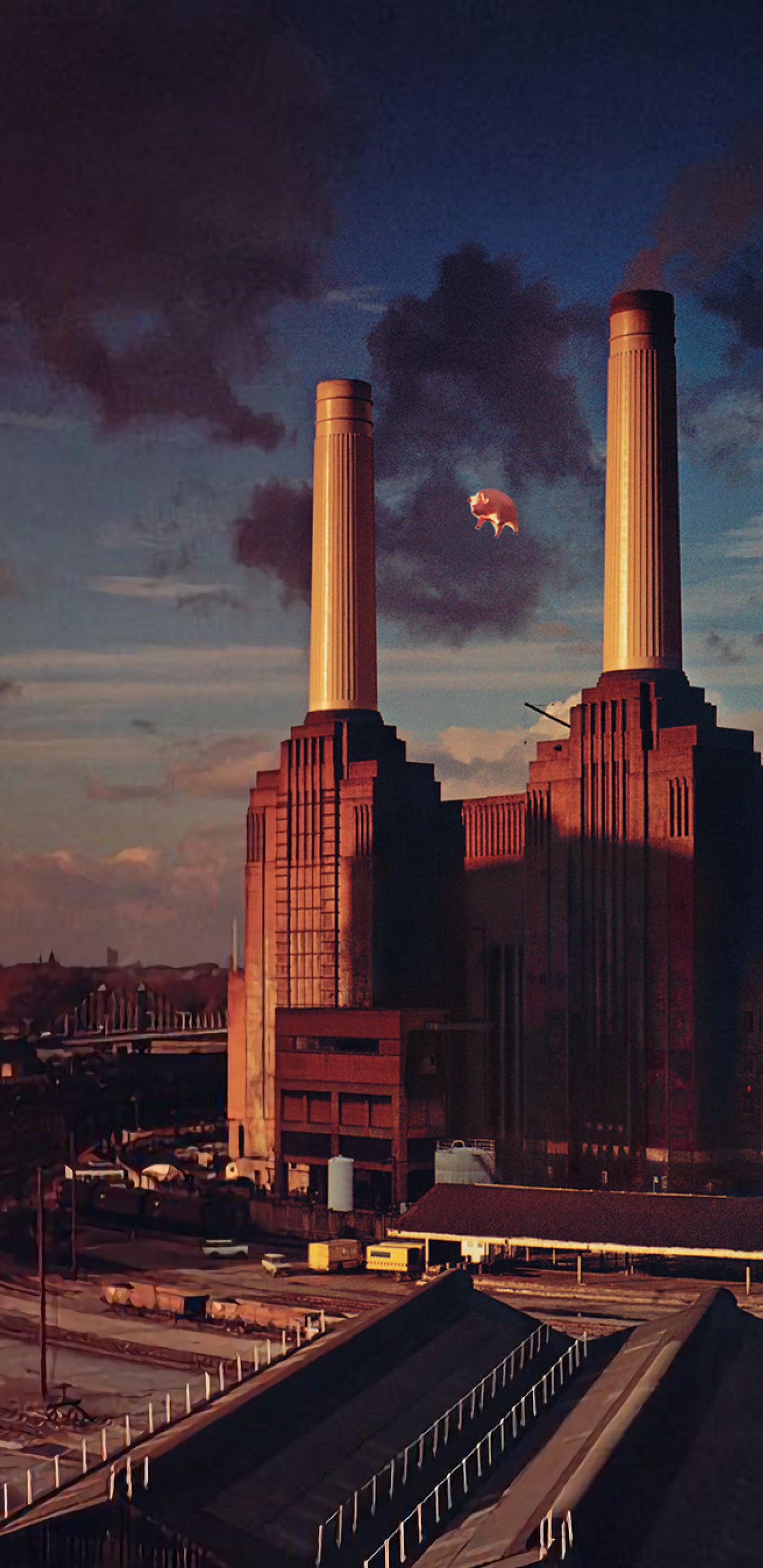 1440x2960 Pink Floyd Animals Album Cover Samsung Galaxy Note 9 8