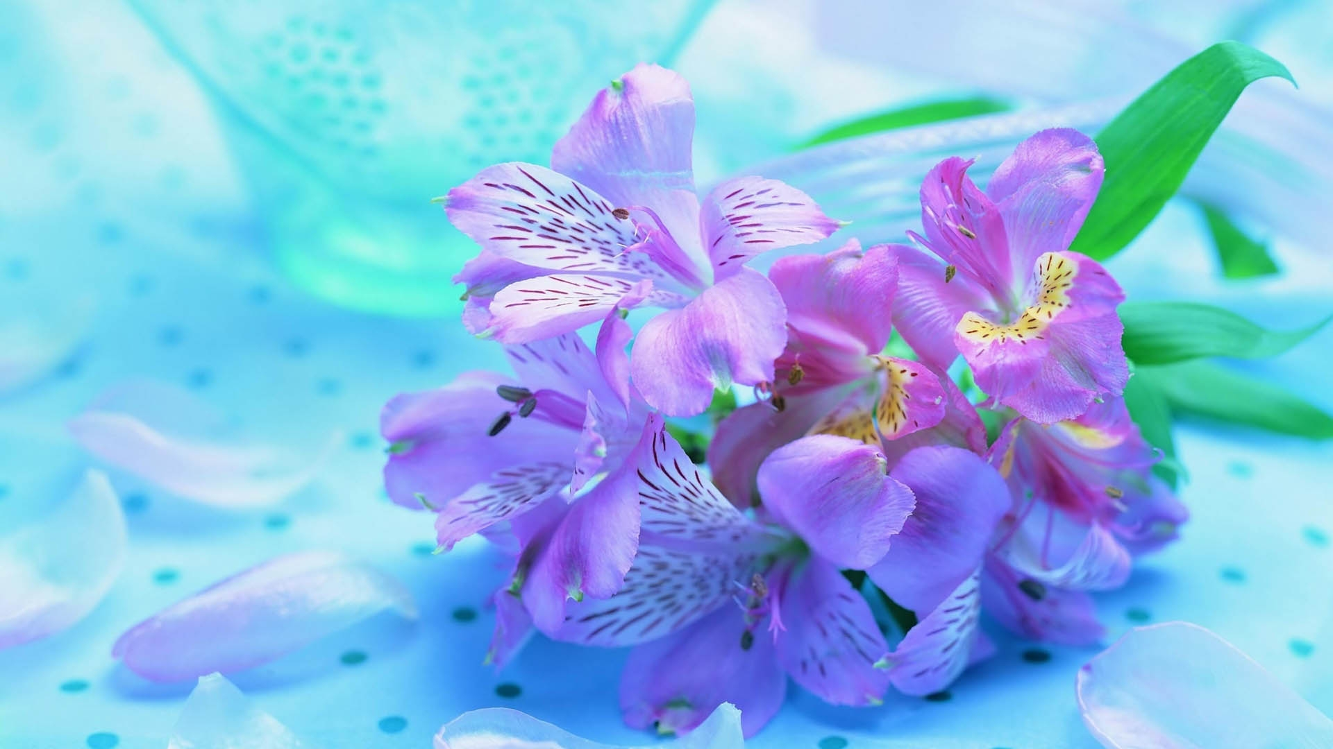 Plants Flowers Stripes Wallpaper HD Macro 4K Wallpapers