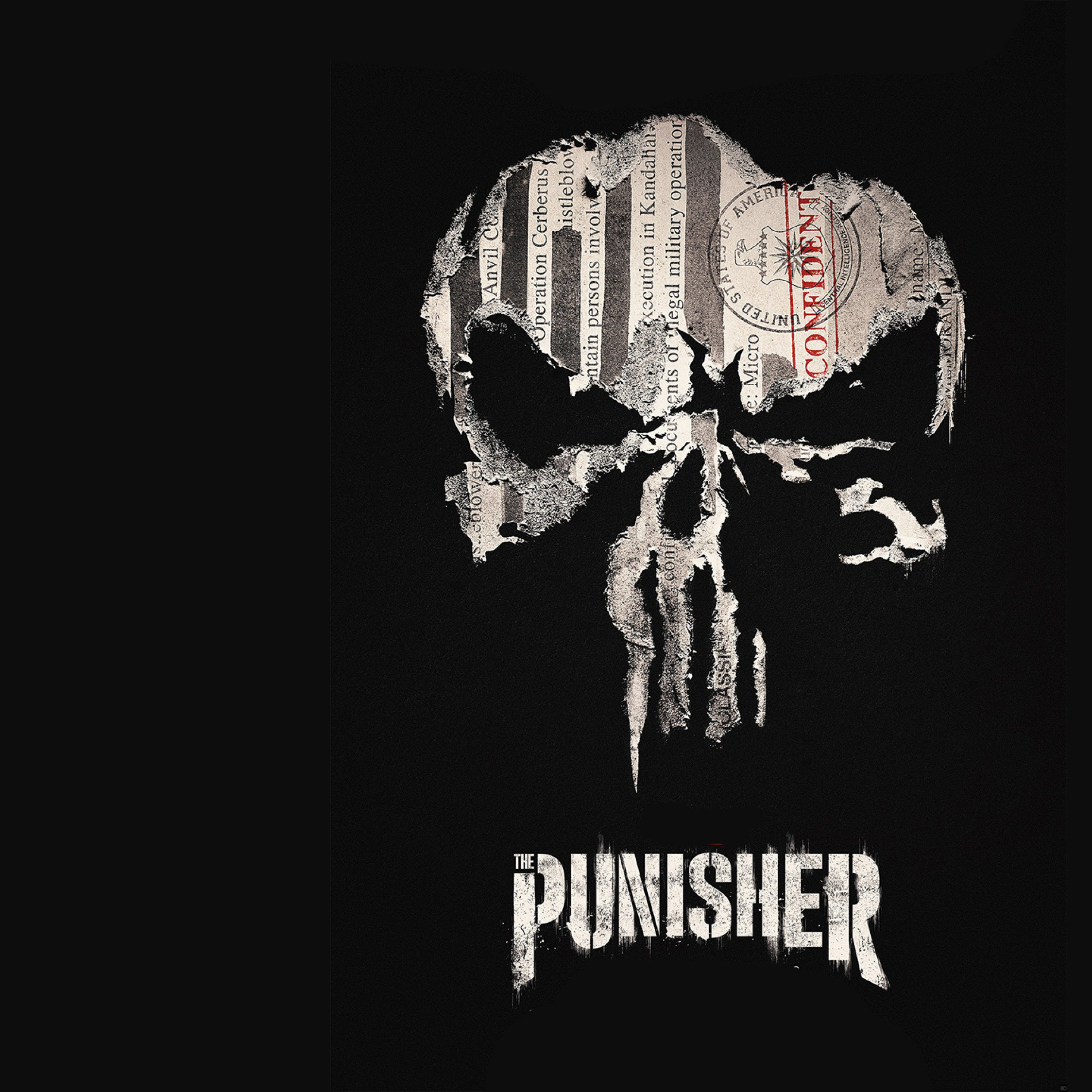 Beautiful Wallpaper Marvel Ipad Mini - punisher-marvel_59159_2248x2248  2018_362613.jpg