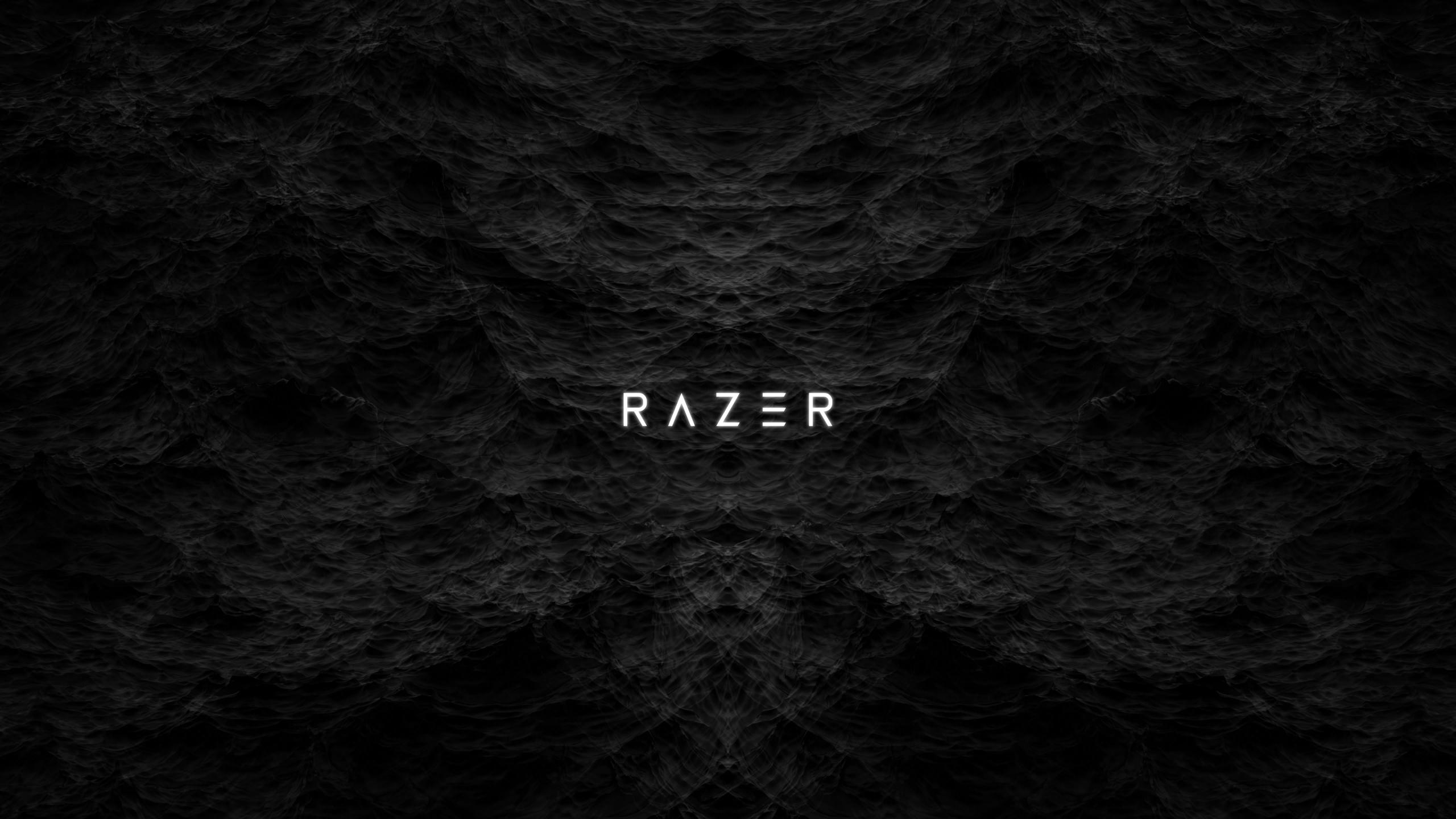 2560x1440 Razer 4K 1440P Resolution