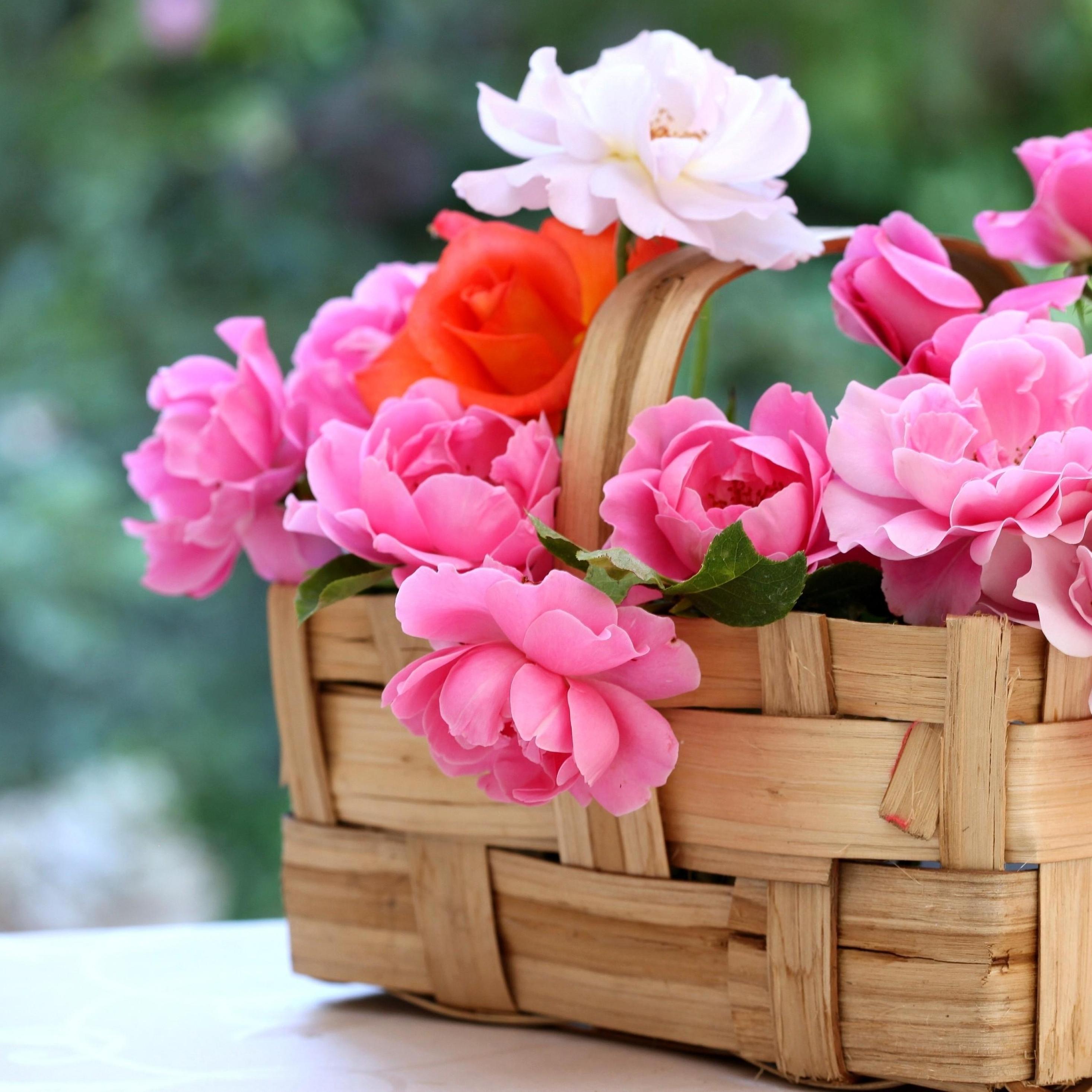 отличных выходных открытка с цветами многих обитателей