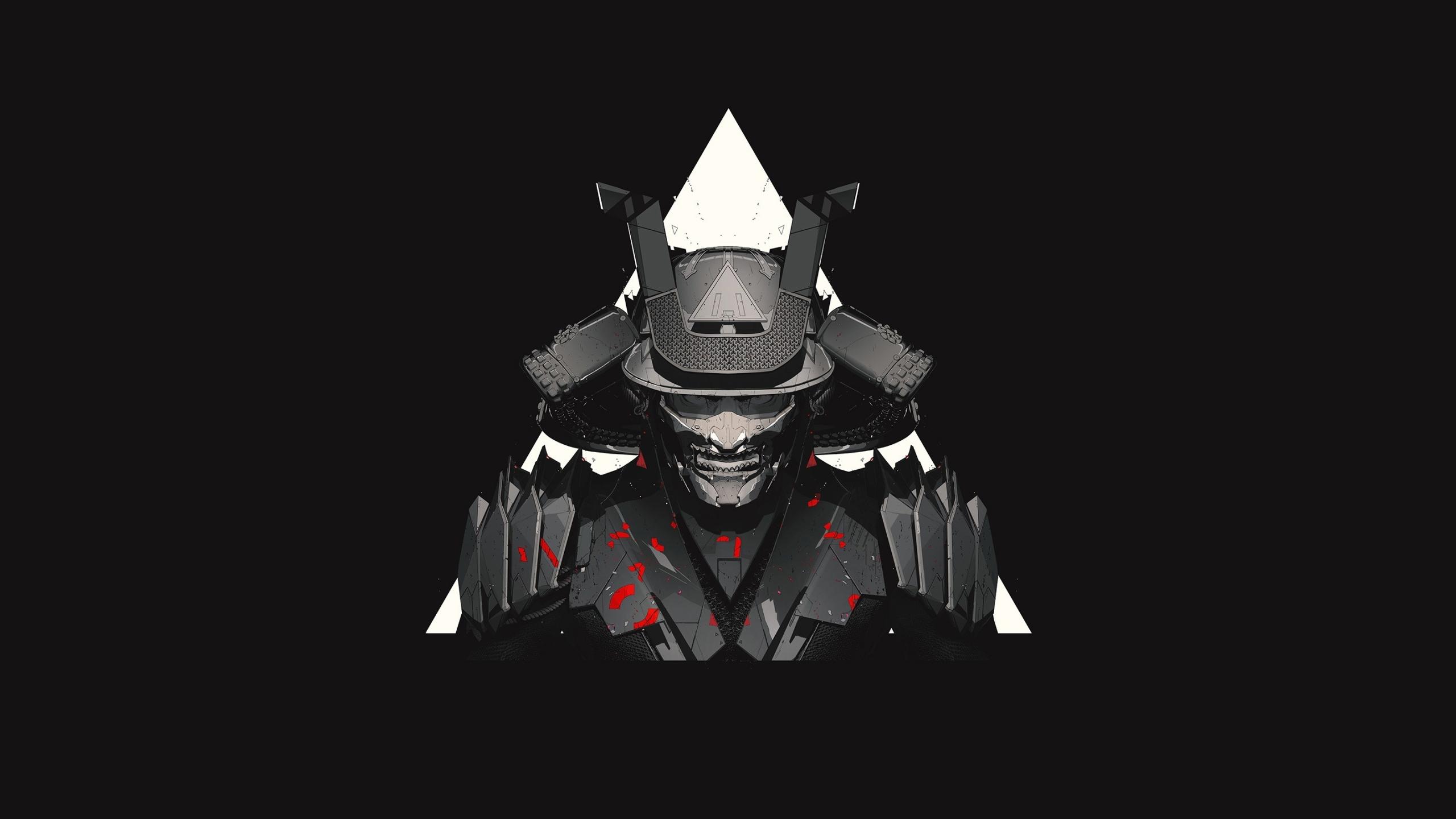 2560x1440 Samurai Minimal Fantasy 1440P