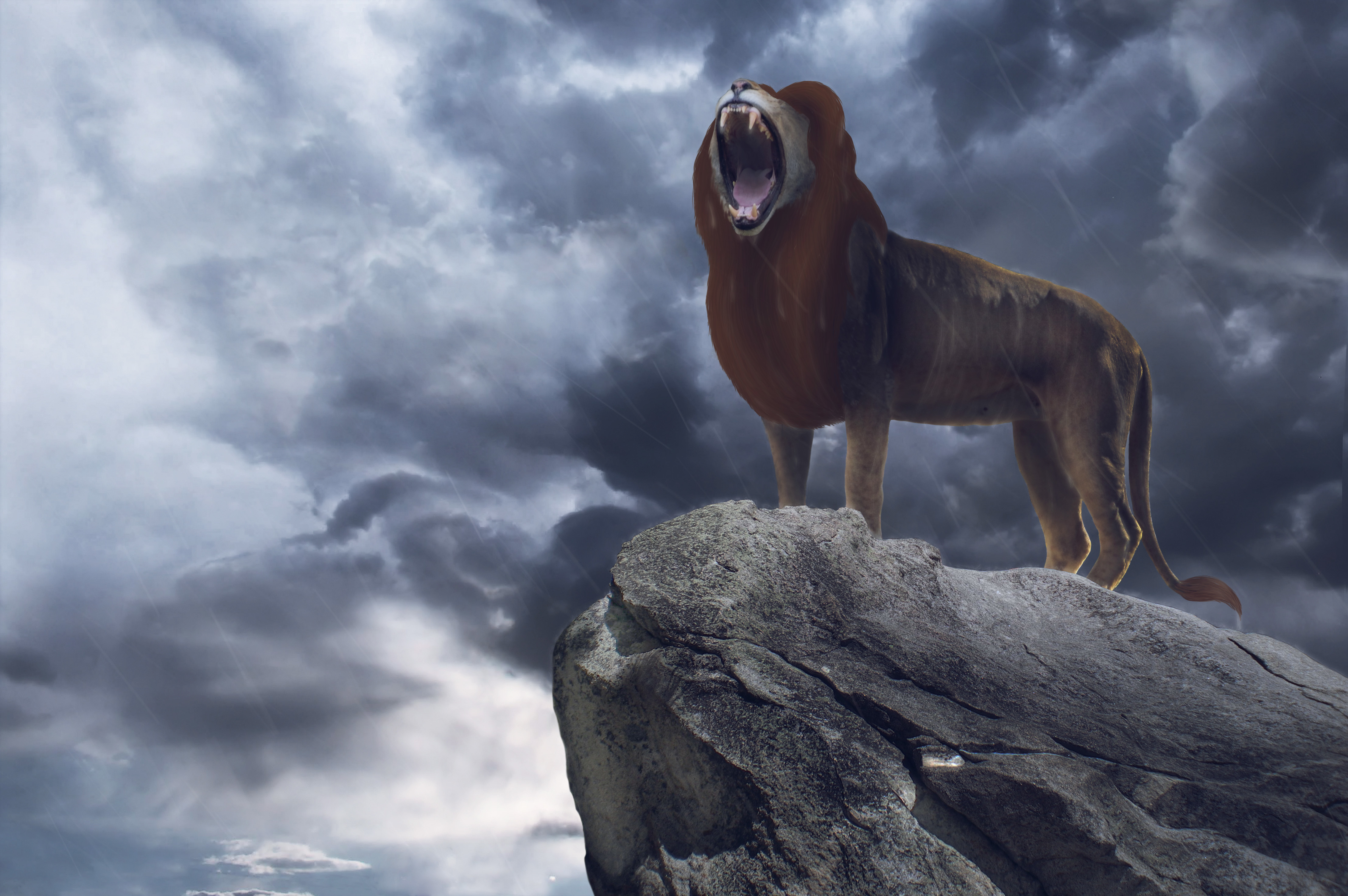Simba In The Lion King 2019 Movie Wallpaper Hd Movies 4k
