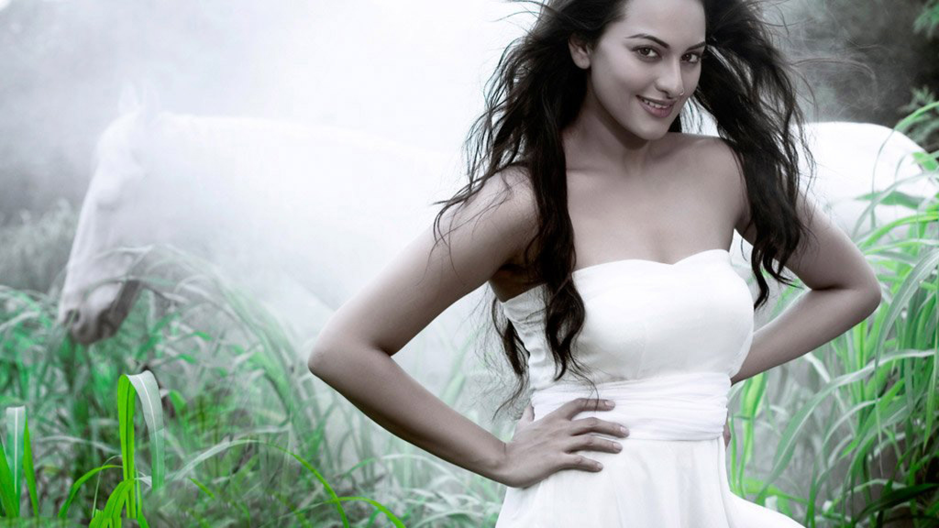 Sonakshi Sinha New Beautiful Photoshoot, HD Wallpaper