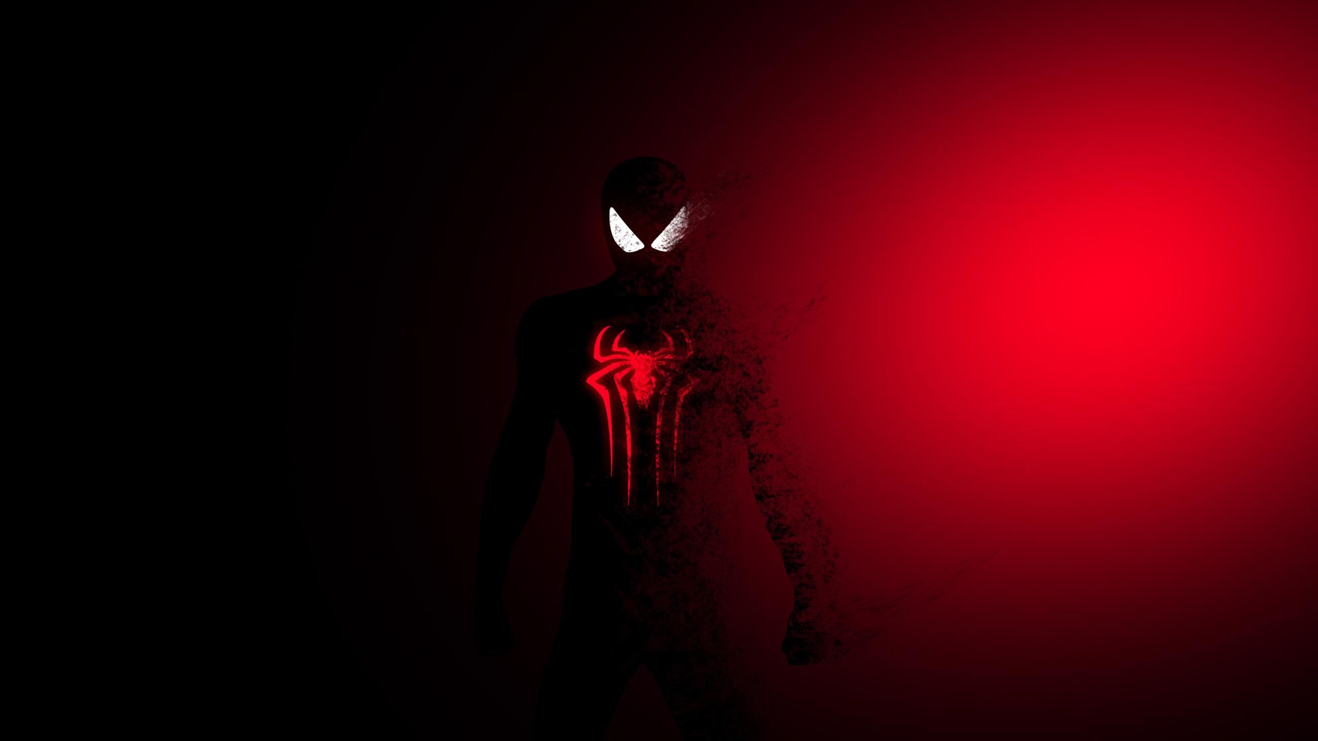 2560x1440 Spider Man Amazing Art 1440p Resolution Wallpaper Hd
