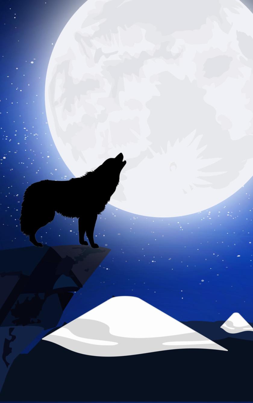 Stars Silhouette Wolf ...